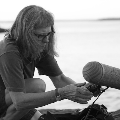 Dianne Ballon    Dianne Ballon  is a sound artist. Her works have aired on  All Things Considered . She produced sound for the current exhibit,   The Marines and Tet  . Through an artist-in-residency, she created a sound portrait of  Shenandoah National Park.  She was awarded for her recording of  boats creaking at a dock . She taught audio at UMaine, and workshops at Harvard and the  Podcast Garage . For 10 years, she served on the teaching/production staff at the  National Audio Theatre Festivals .