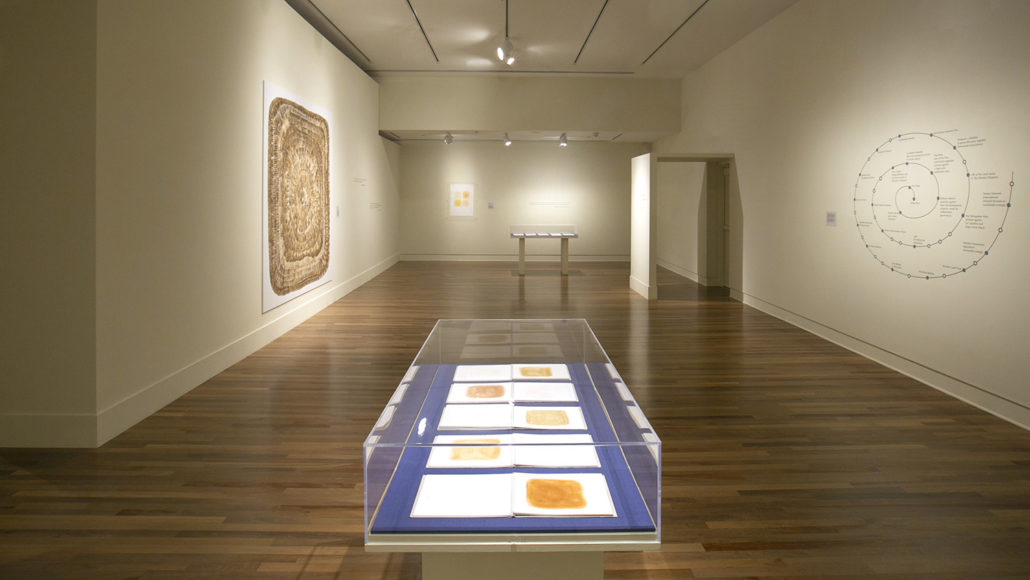 Moloka'i Window , James Jack 2018, Installation View at the Honolulu Museum of Art  Photograph from the artist