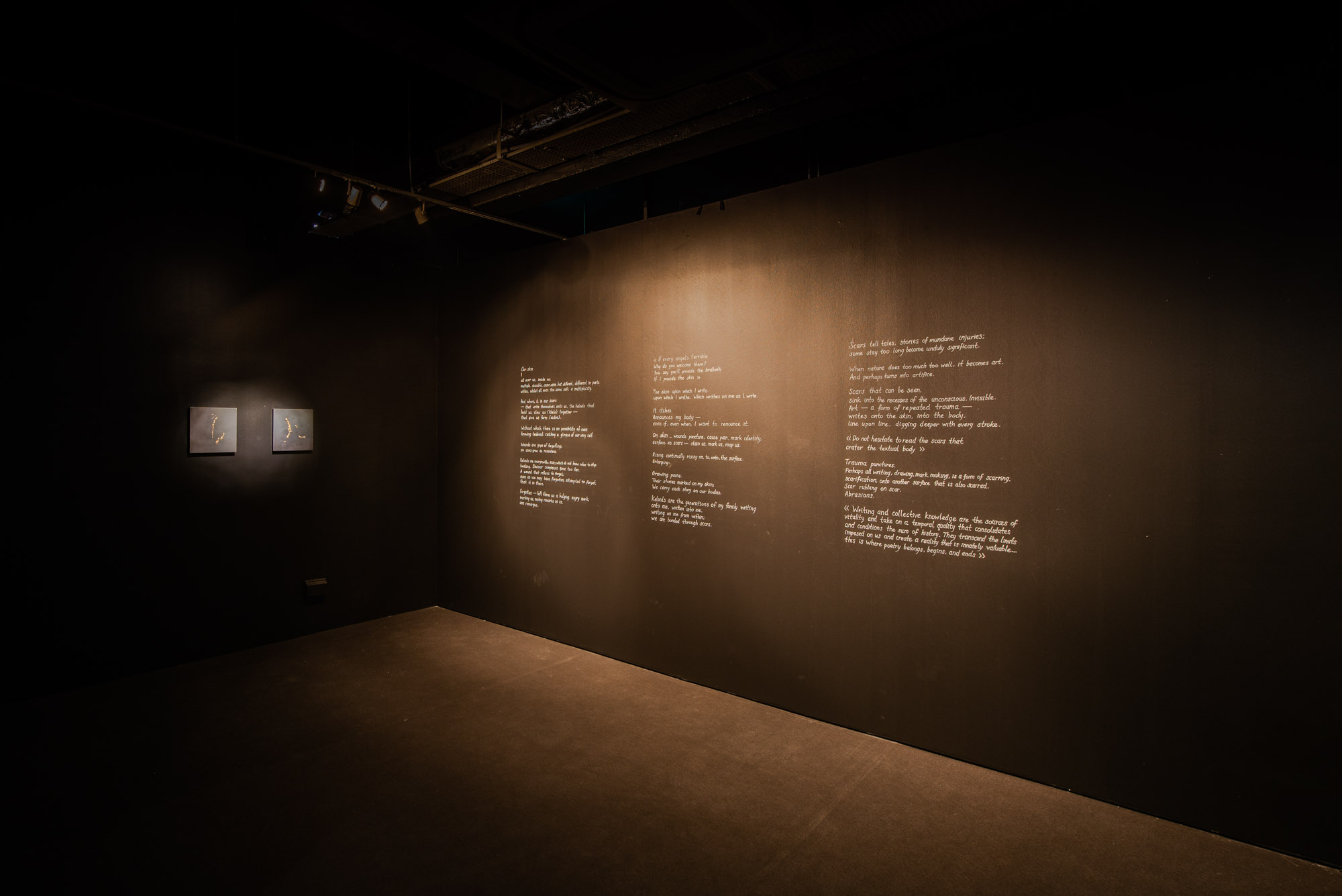 The scars that write us, Yanyun Chen 2018, Installation View at 8Q @ Singapore Art Museum
