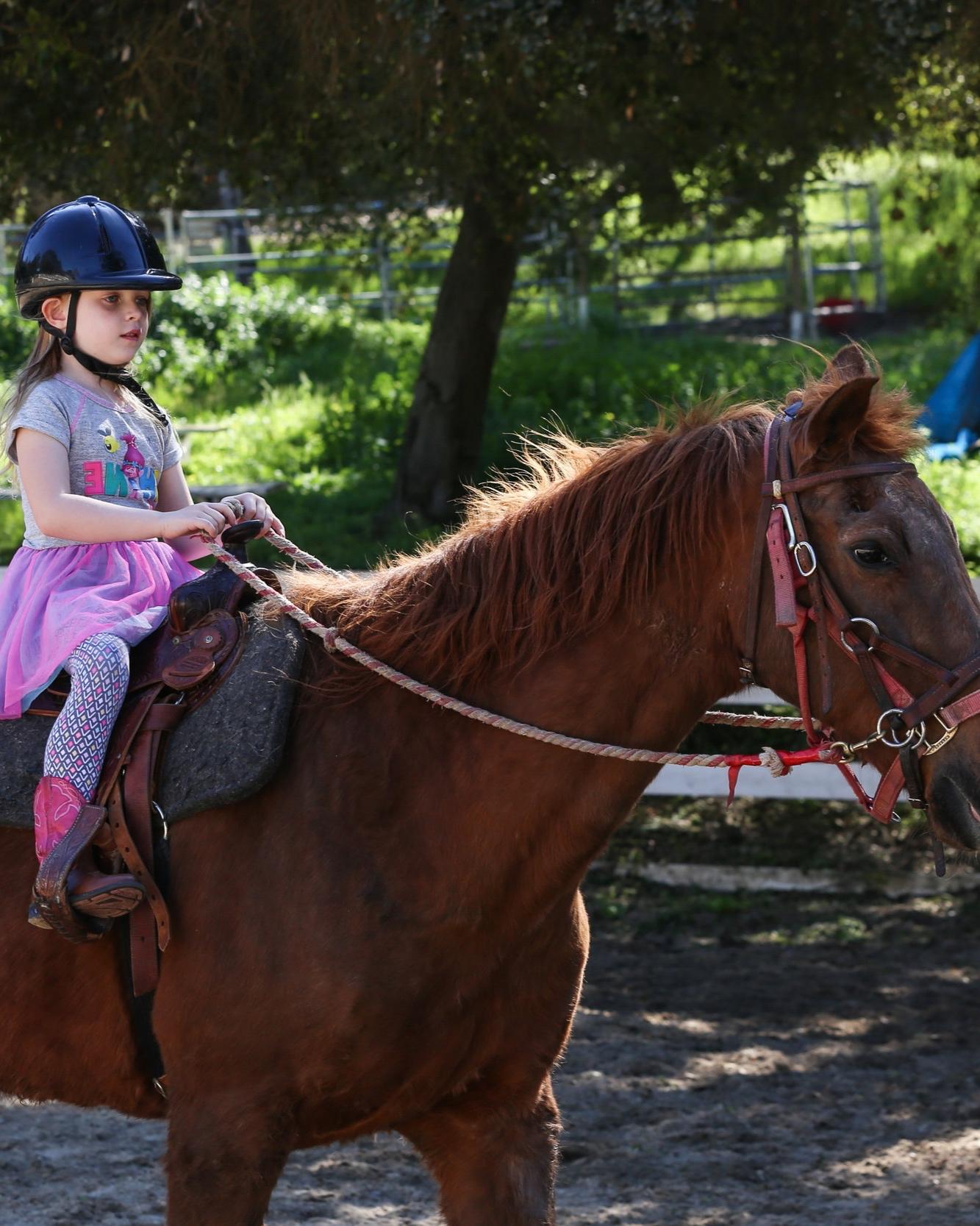 hidden+hills+ranch+horsecamp