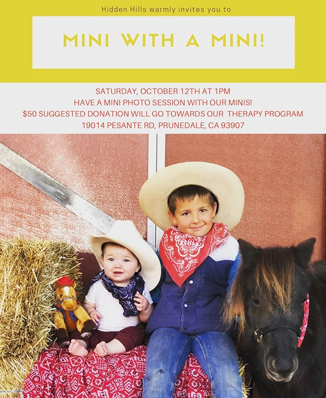 Stop by at History on the Ranch to experience a photo shoot with our Minis! 🐴