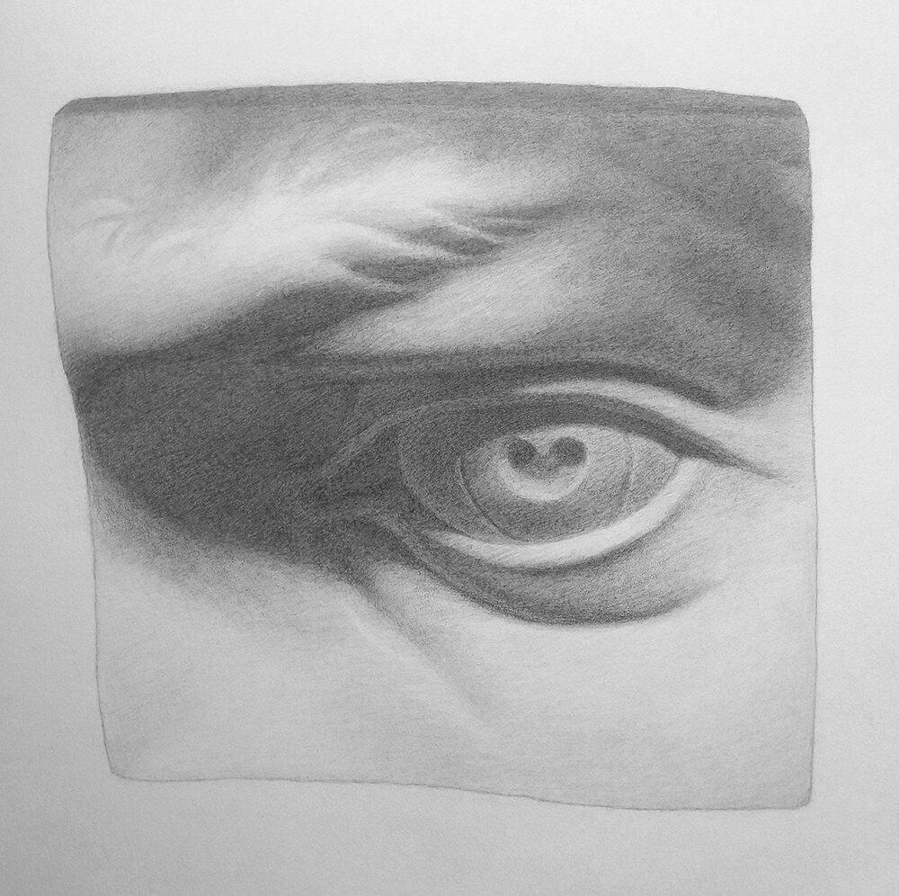 Eye Cast Study - Final small.jpg