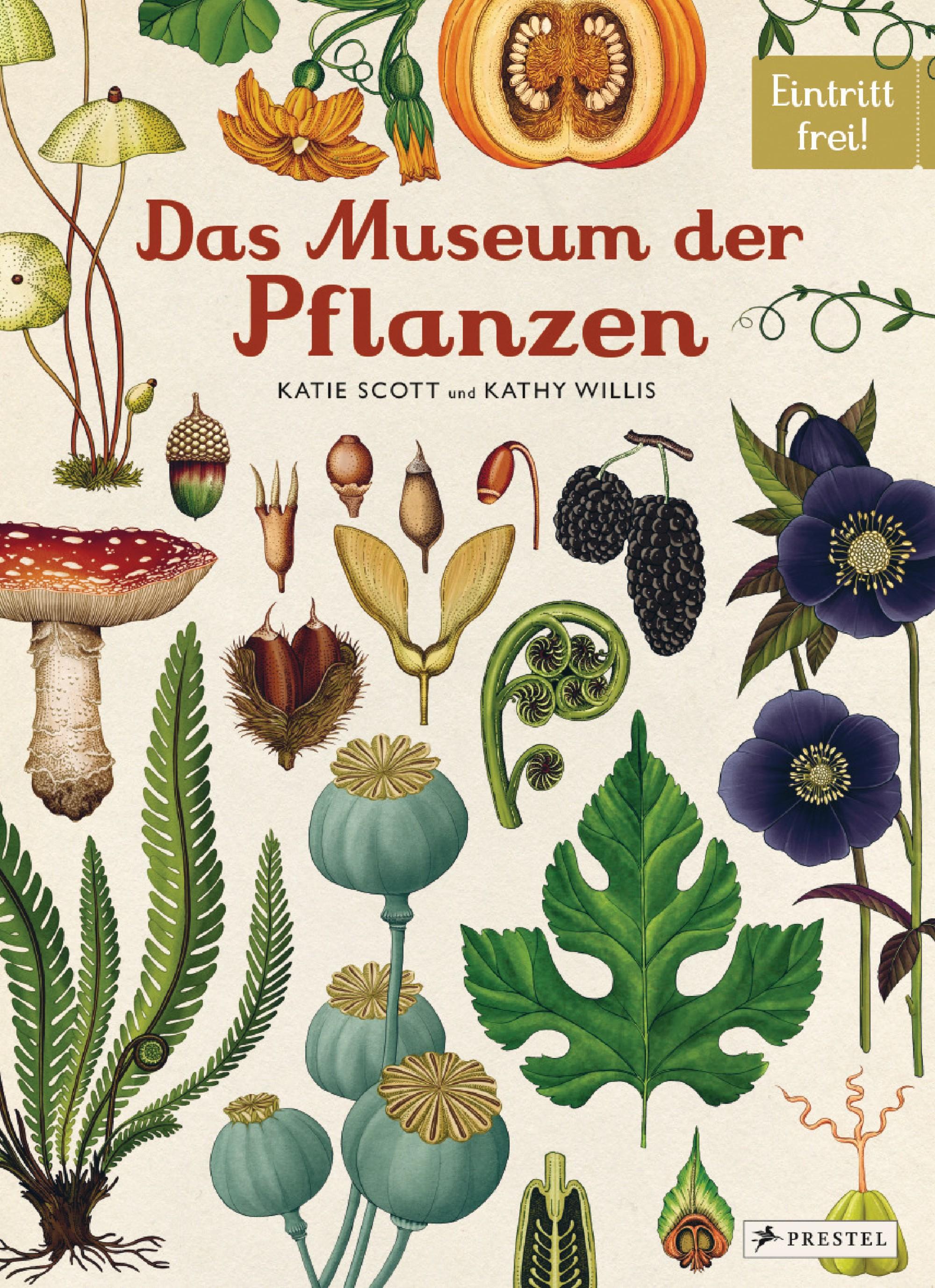 cover.museum.jpg