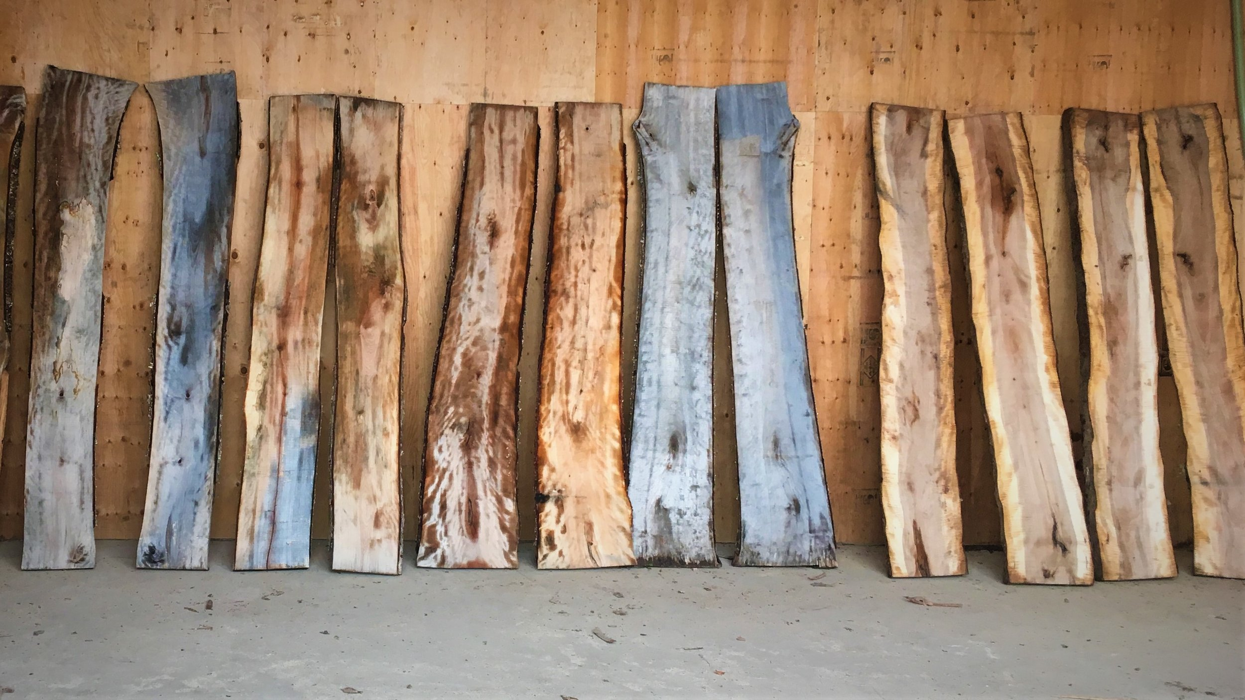 NOW IN: KILN DRIED - LIVE EDGE SLABWOOD