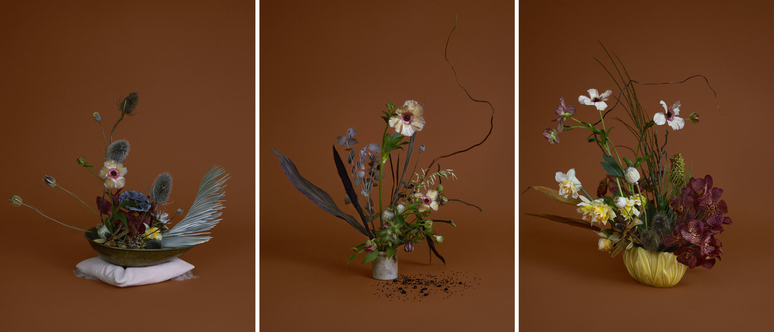 A floral representation of how Katie feels before, during and after her period. Photography Kate Cox