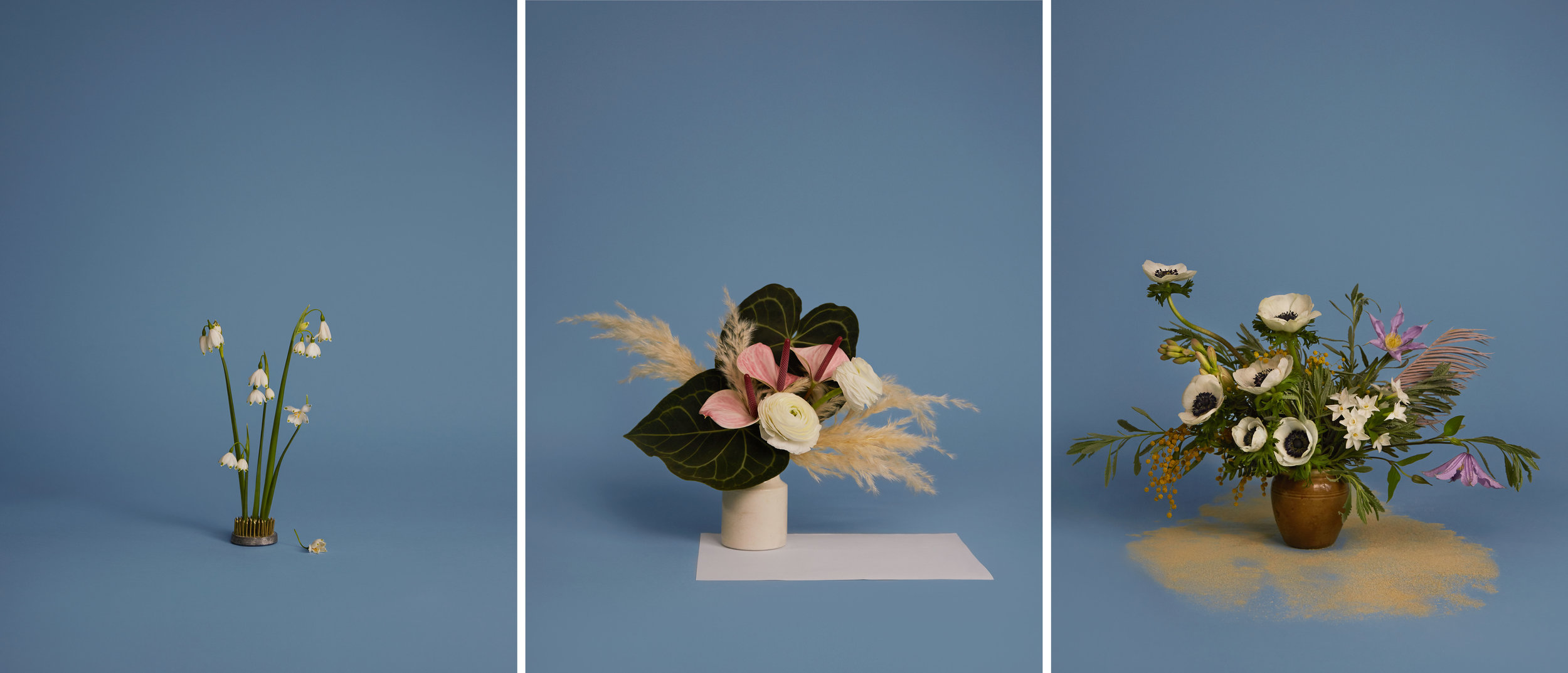 A floral representation of how Terri feels before, during and after her period. Photography Kate Cox.
