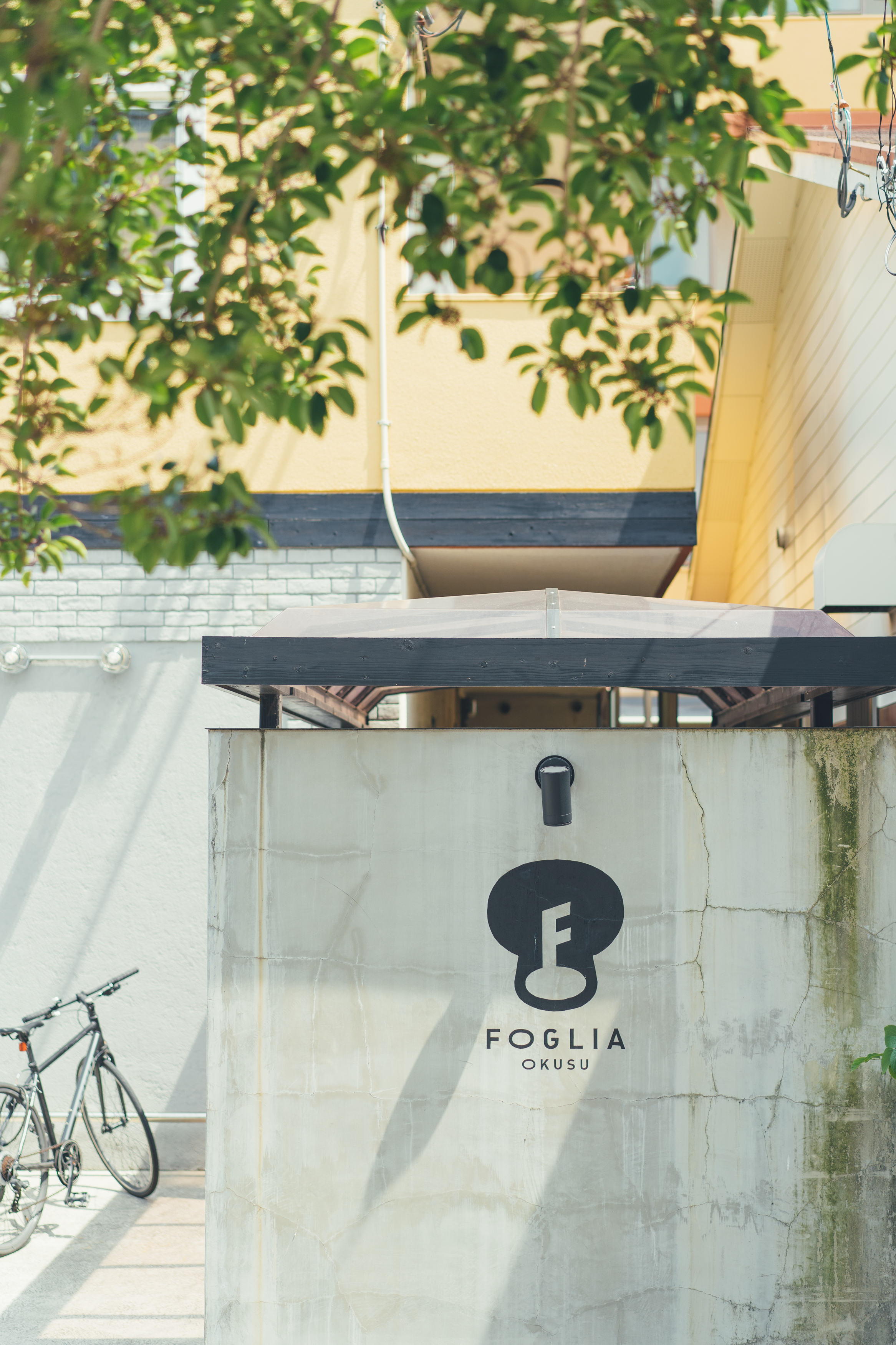 foglia-1.jpg