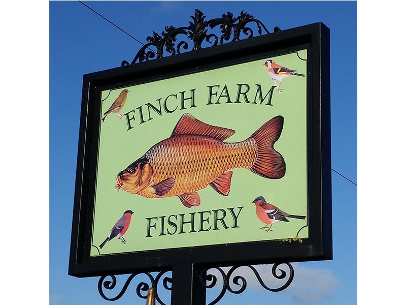 FinchFarm.jpg