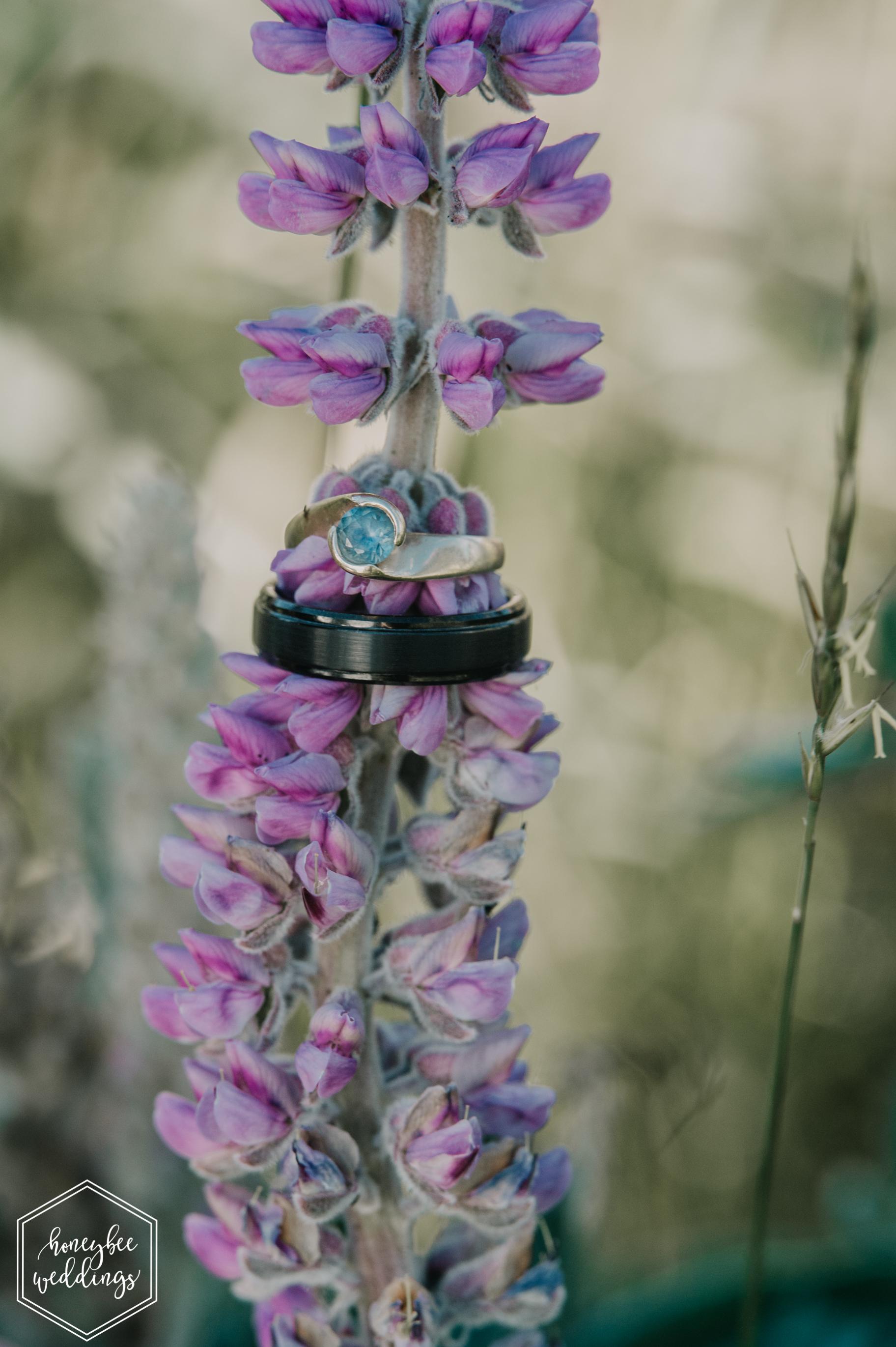 417 White Raven Wedding_Montana Wedding Photographer_Honeybee Weddings_ Meghan Maloney + Arza Hammond 2018-9038.jpg
