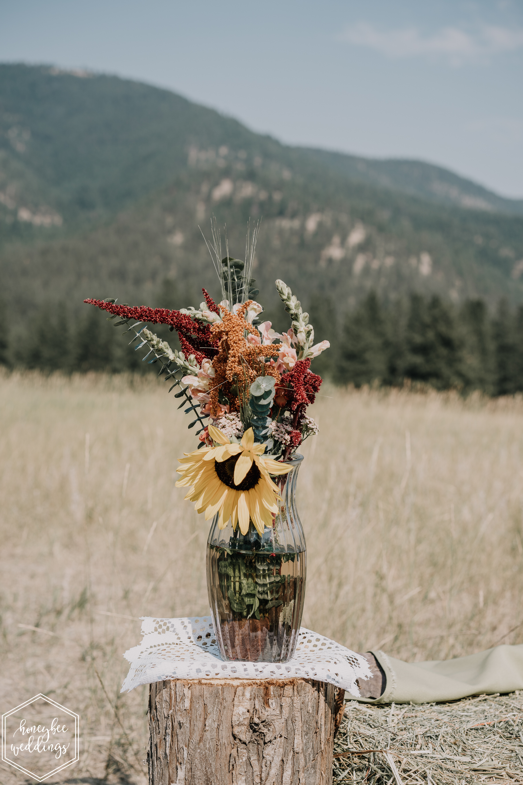 0328Alberton Wedding_Montana Wedding Photographer_Anneliesa Bashaw + Wyatt Zeylawy_August 11, 2018-839.jpg