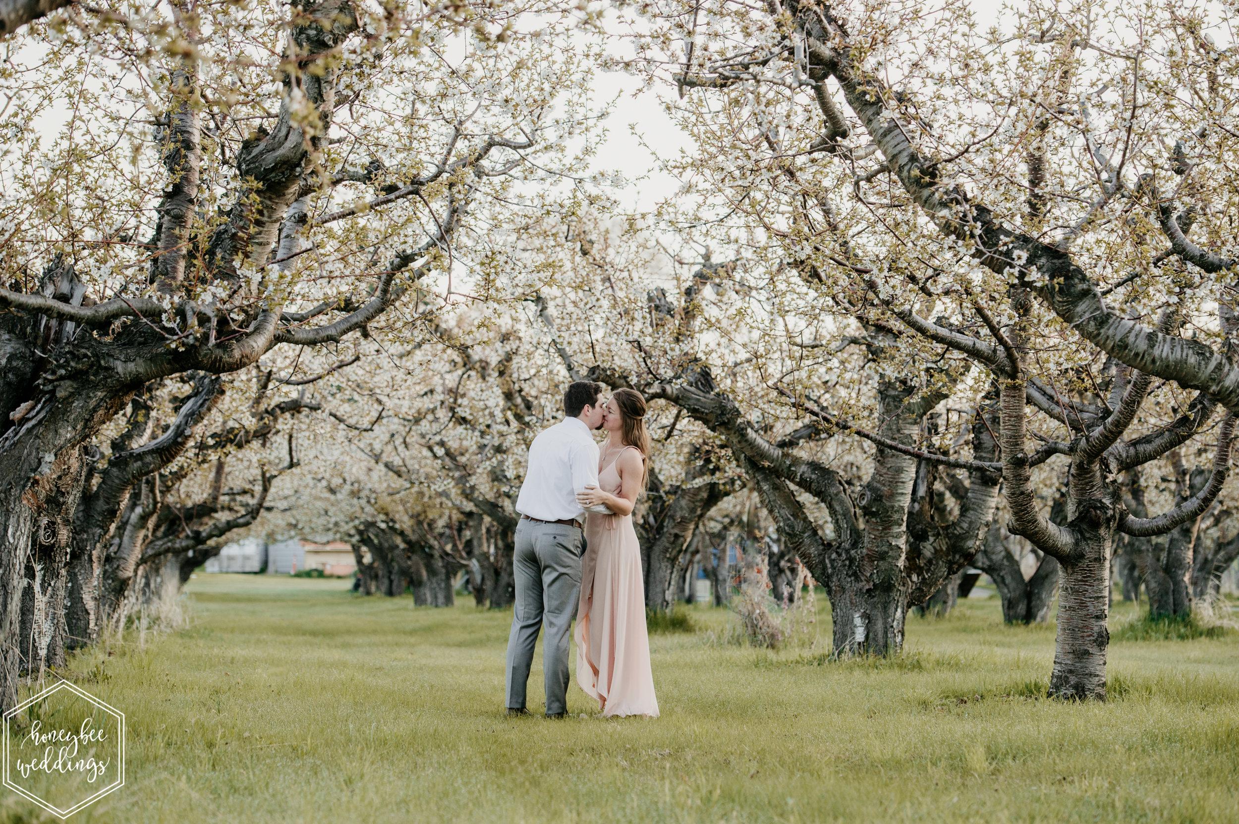 030Montana Wedding Photographer_Cherry Blossom Engagement Session_Ashlin & Luke_Honeybee Weddings_May 11, 2019-28.jpg