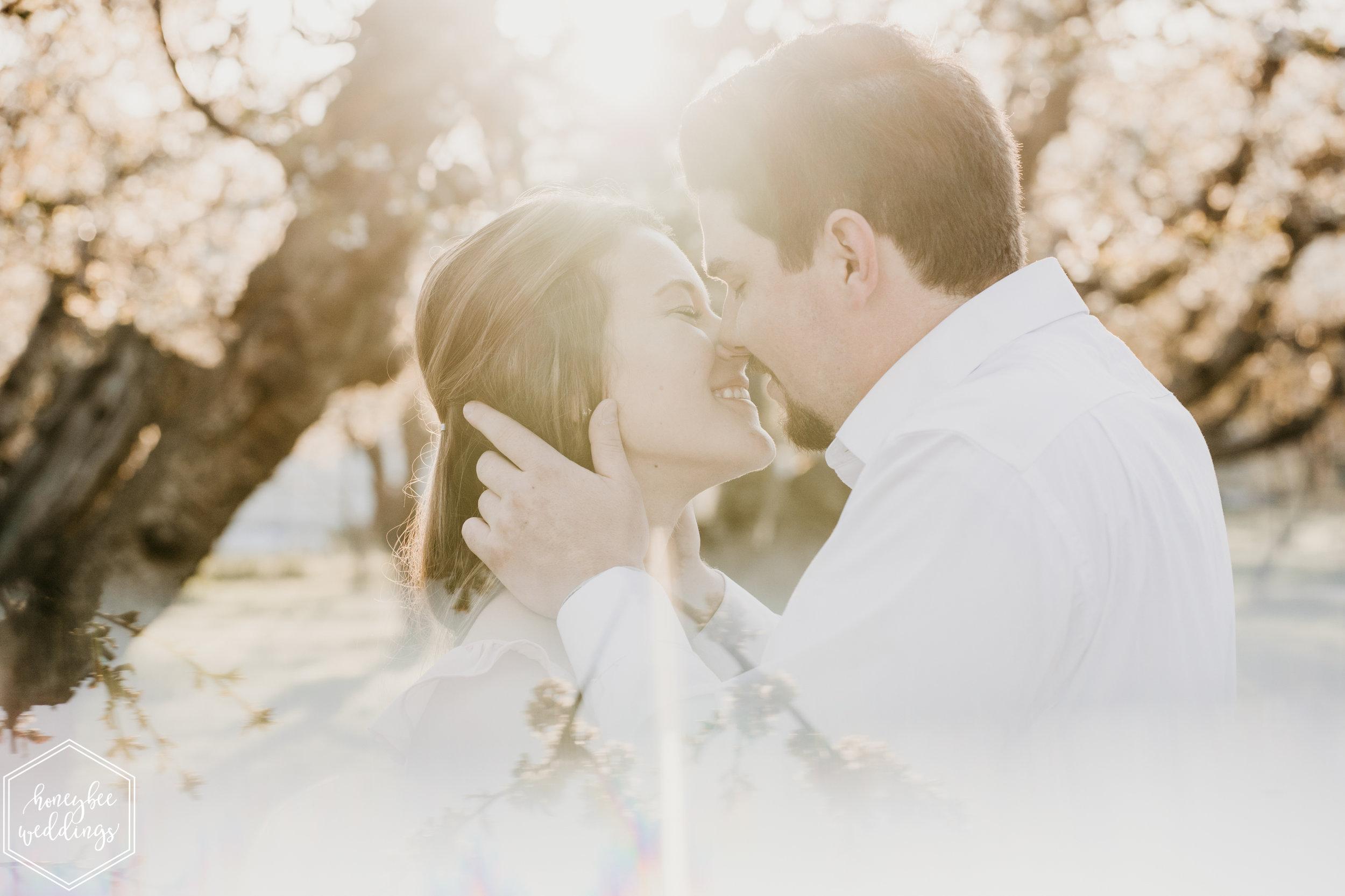095Montana Wedding Photographer_Cherry Blossom Engagement Session_Ashlin & Luke_Honeybee Weddings_May 11, 2019-297.jpg