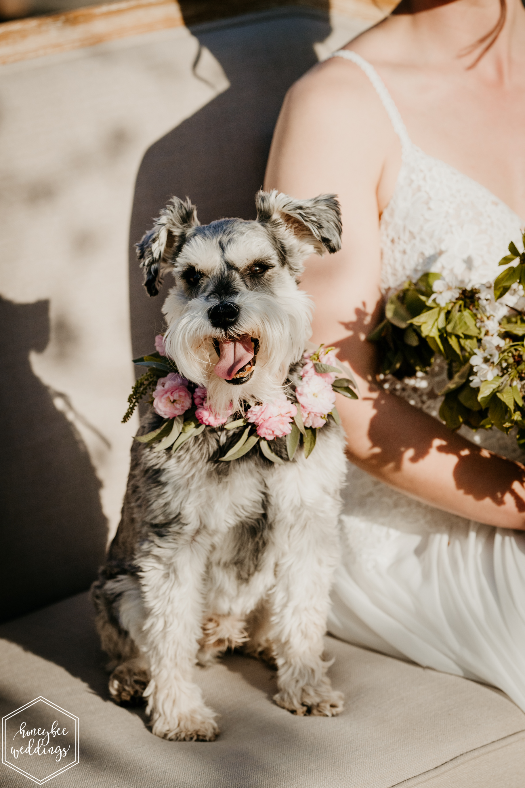 083Cherry Blossom Wedding_Styled Photoshoot_Honeybee Weddings_May 11, 2019-541.jpg