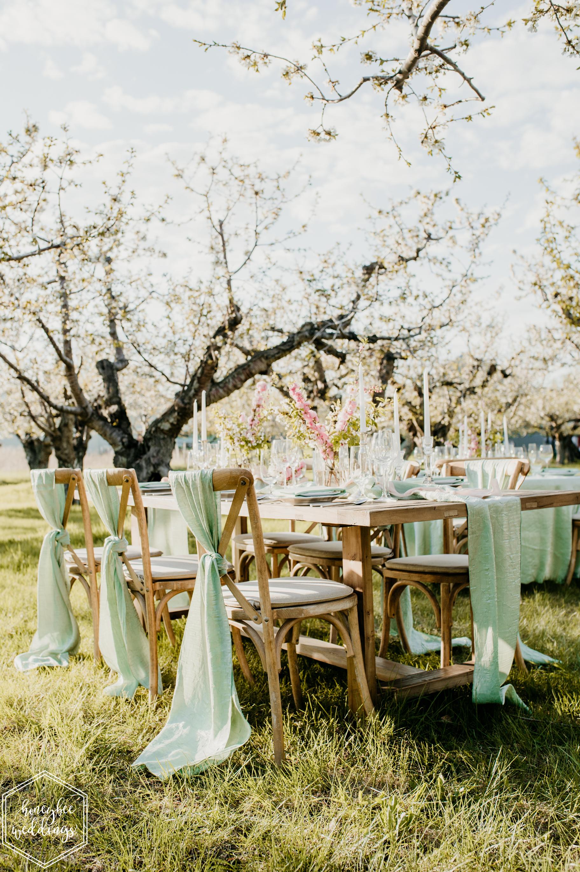 102Cherry Blossom Wedding_Styled Photoshoot_Honeybee Weddings_May 11, 2019-175.jpg