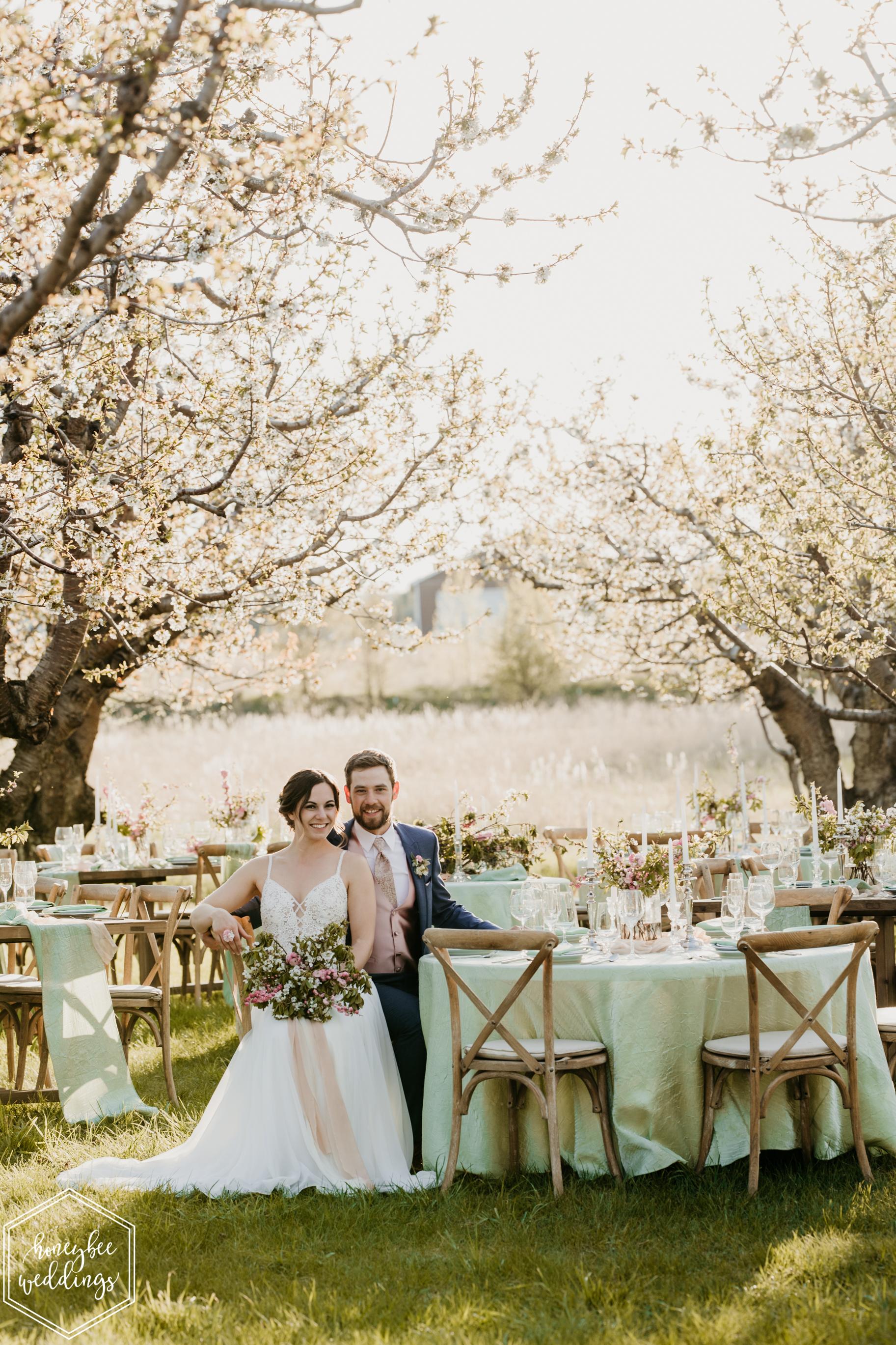 110Cherry Blossom Wedding_Styled Photoshoot_Honeybee Weddings_May 11, 2019-572.jpg
