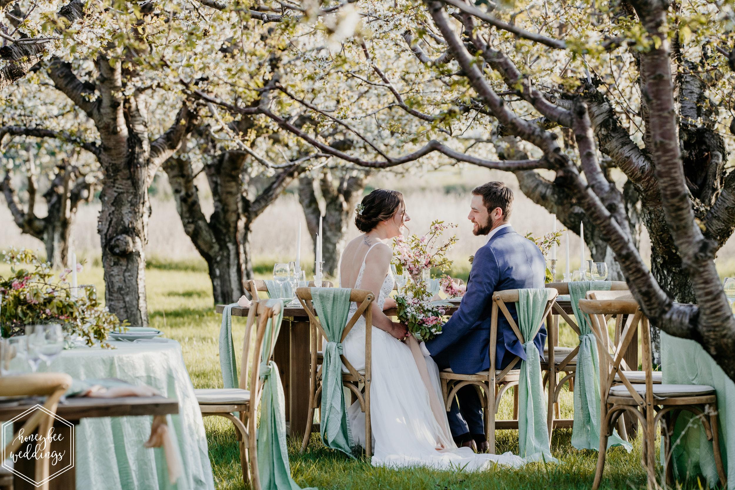 141Cherry Blossom Wedding_Styled Photoshoot_Honeybee Weddings_May 11, 2019-634.jpg