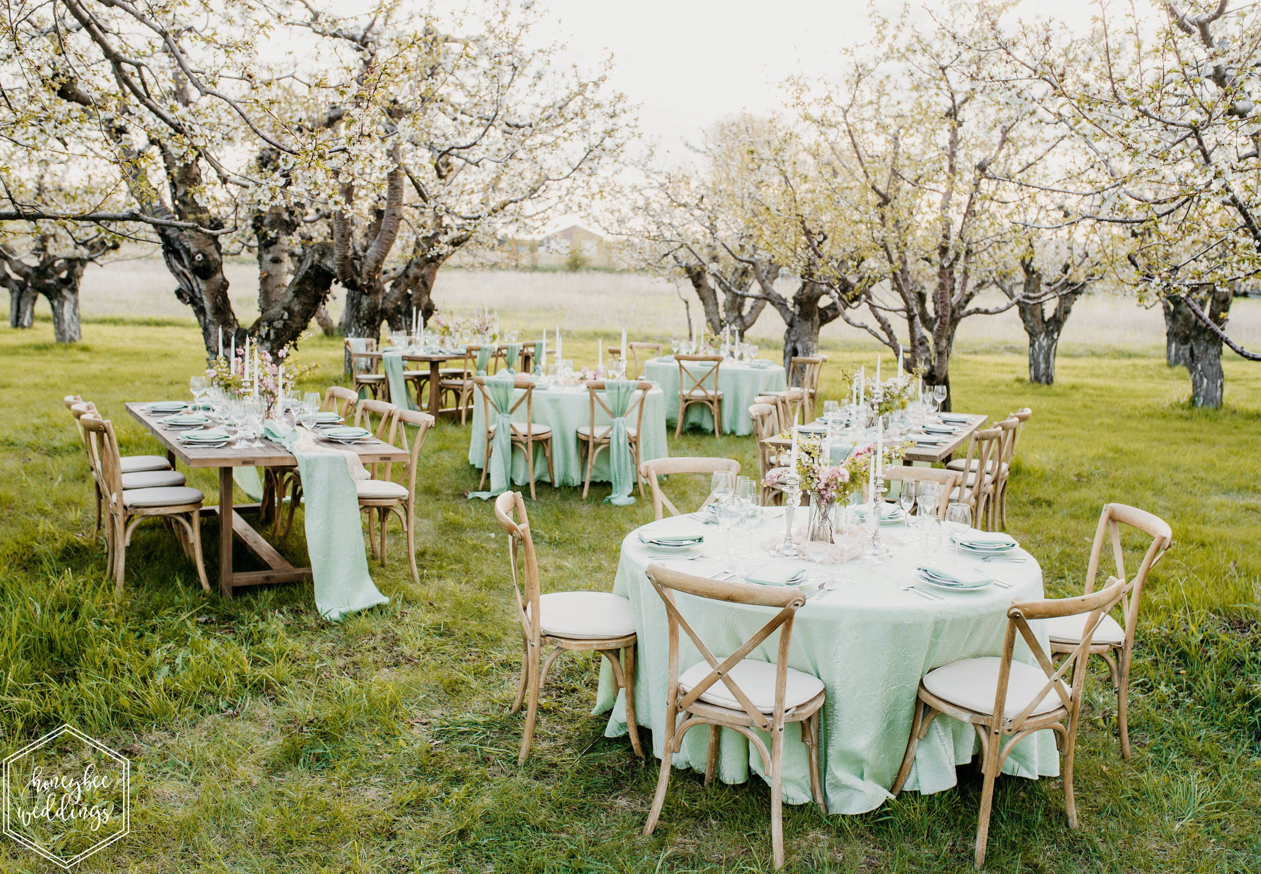 156Cherry Blossom Wedding_Styled Photoshoot_Honeybee Weddings_May 11, 2019-202.jpg