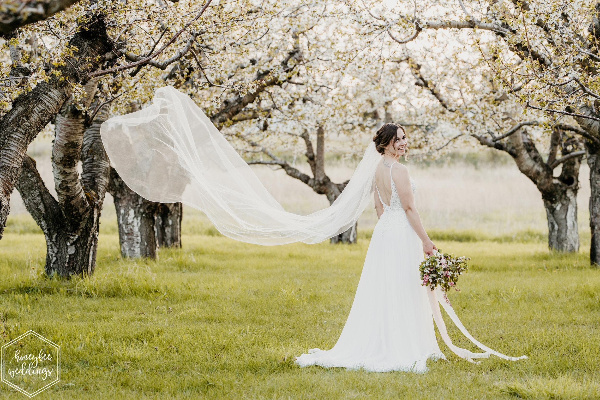 172Cherry Blossom Wedding_Styled Photoshoot_Honeybee Weddings_May 11, 2019-676.jpg