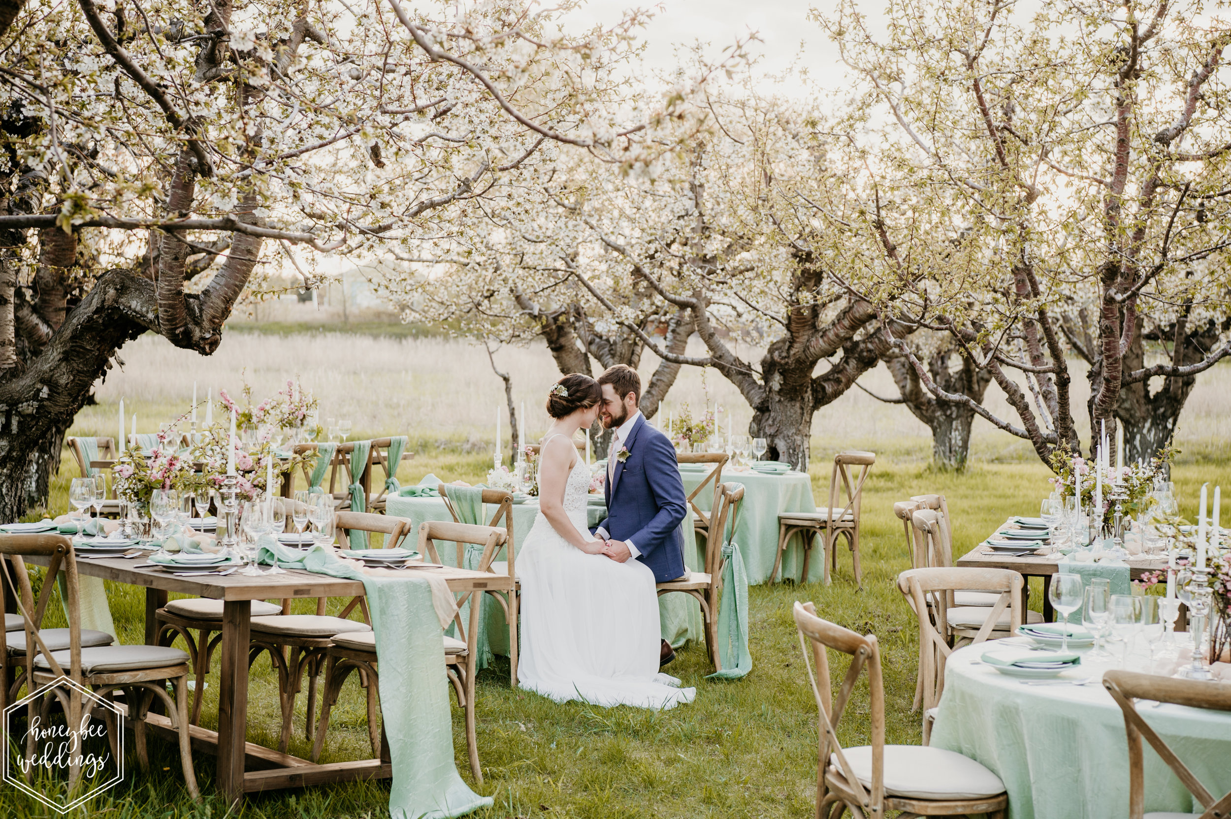 164Cherry Blossom Wedding_Styled Photoshoot_Honeybee Weddings_May 11, 2019-306.jpg