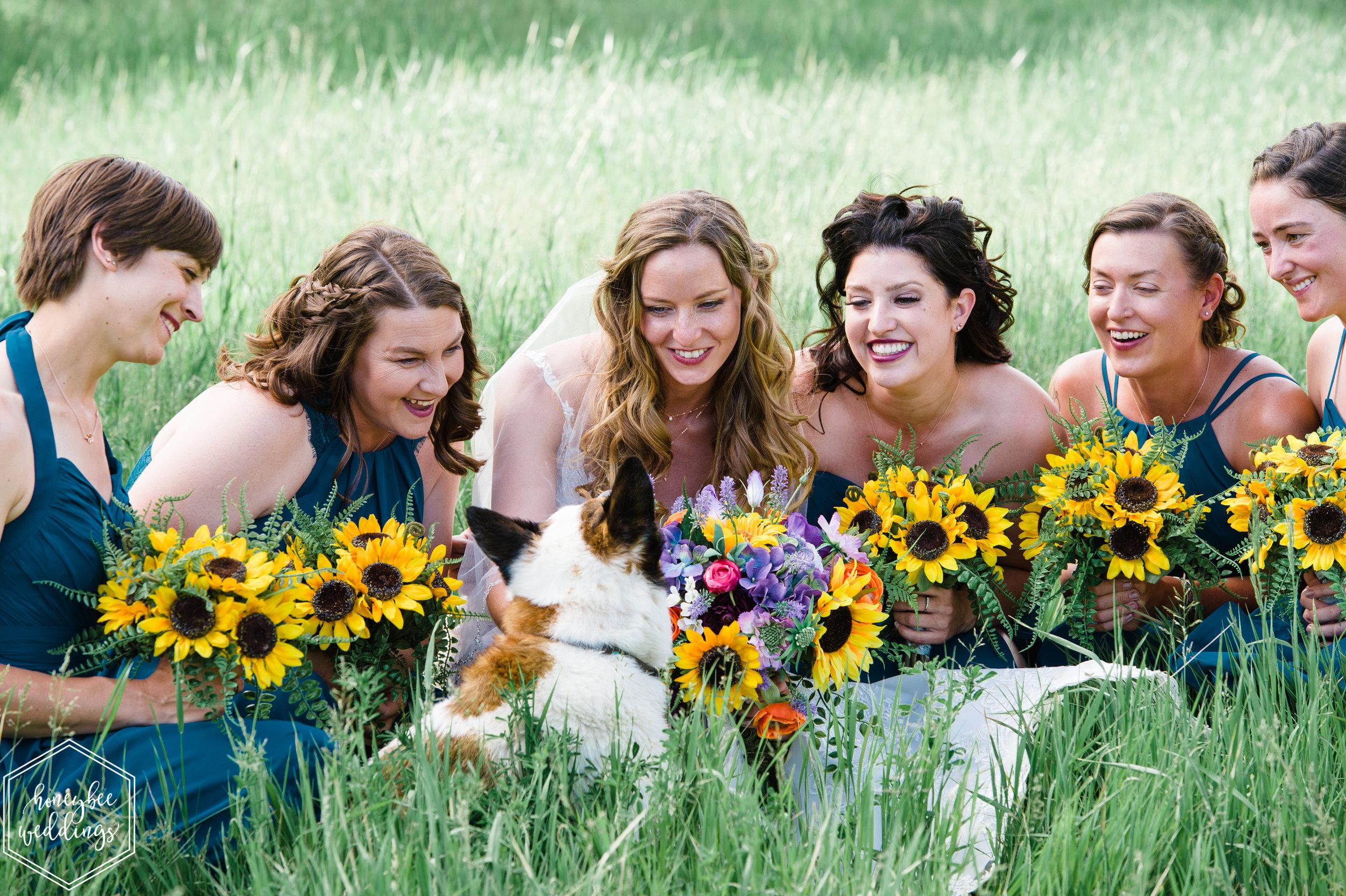 094Yellowstone National Park Wedding_Montana Wedding Photographer_Honeybee Weddings_Shannon & Jonathan_June 29, 2019-2562.jpg