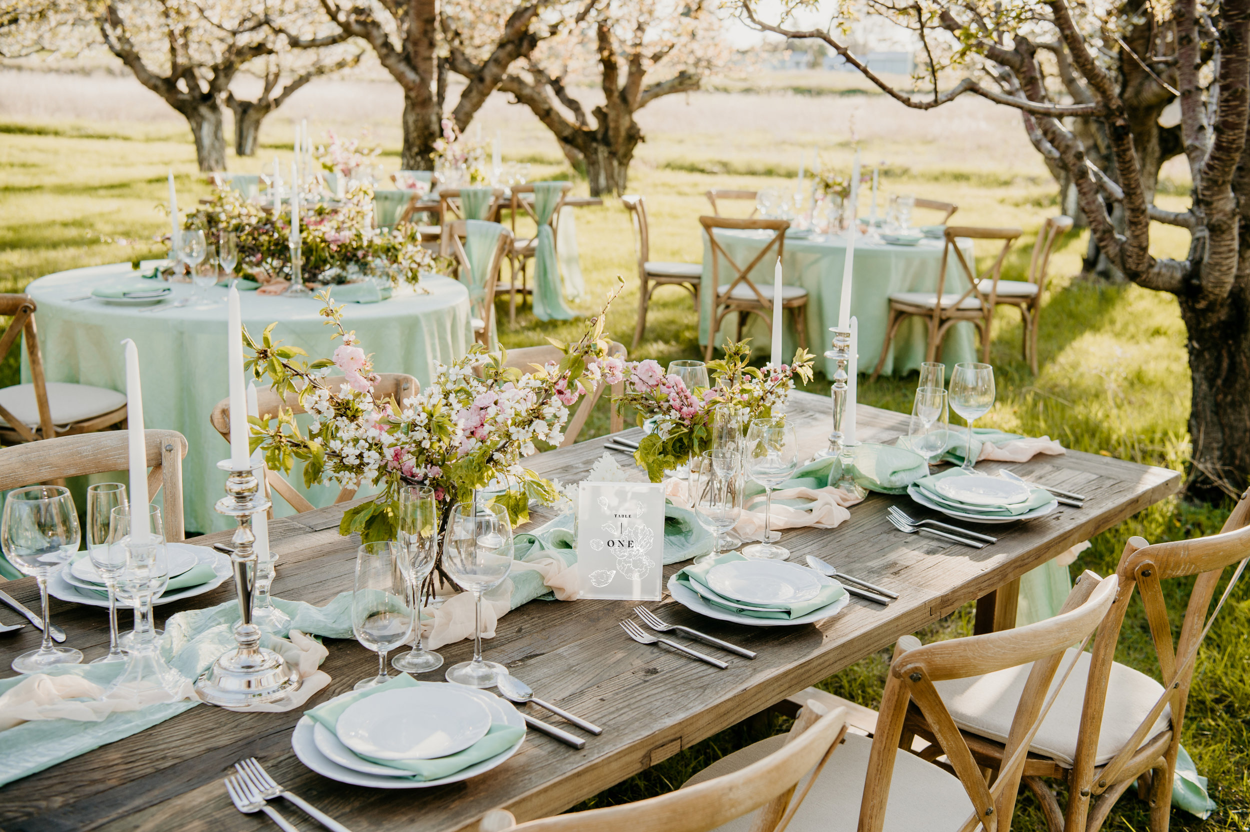 Cherry Blossom Wedding_Styled Photoshoot_Honeybee Weddings-113.jpg