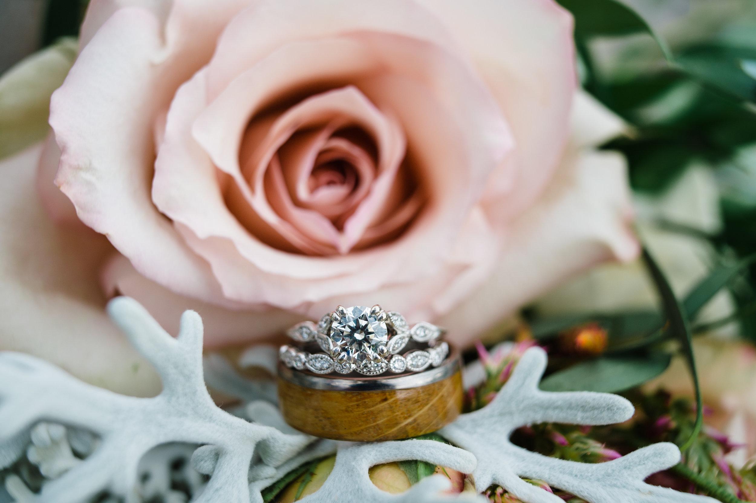 050Sky Ridge Ranch Wedding_Montana Wedding Photographer_Jessica & Brian_Honeybee Weddings_August 24, 2019-23.jpg