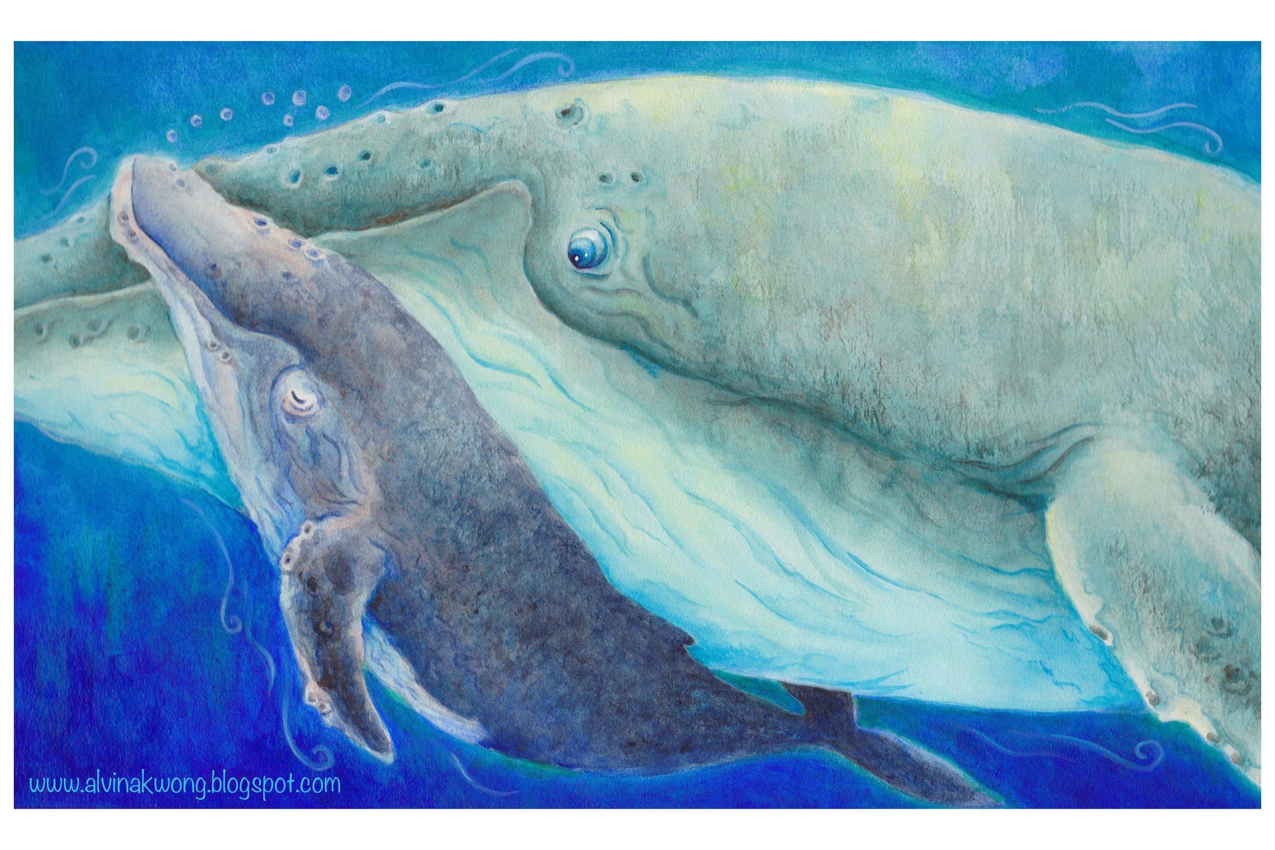 whale 300dpi watermark.jpg