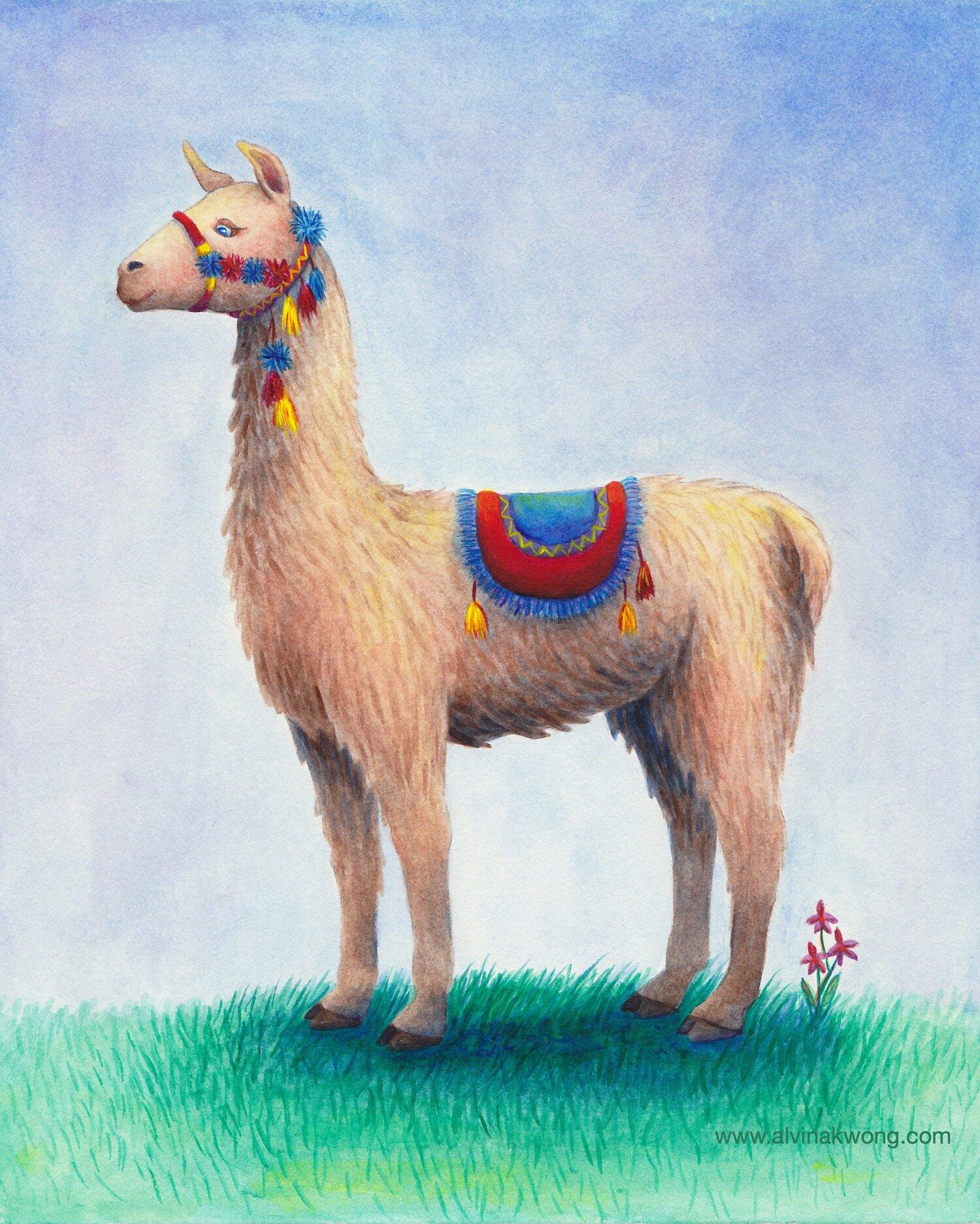 Llama Peru WEB.jpg