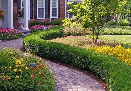 Landscape contractors with landscaping services that include plantings and lawn service in Glenview, IL
