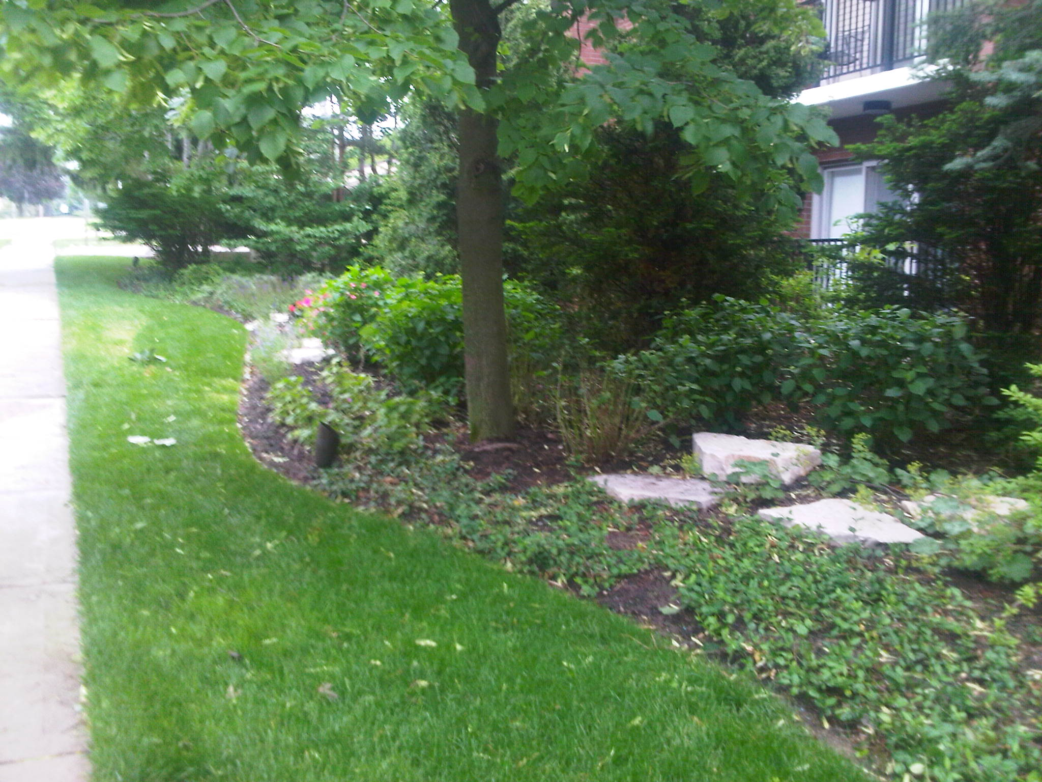 Lawn service in Northbrook, Glenview, Buffalo Grove, IL