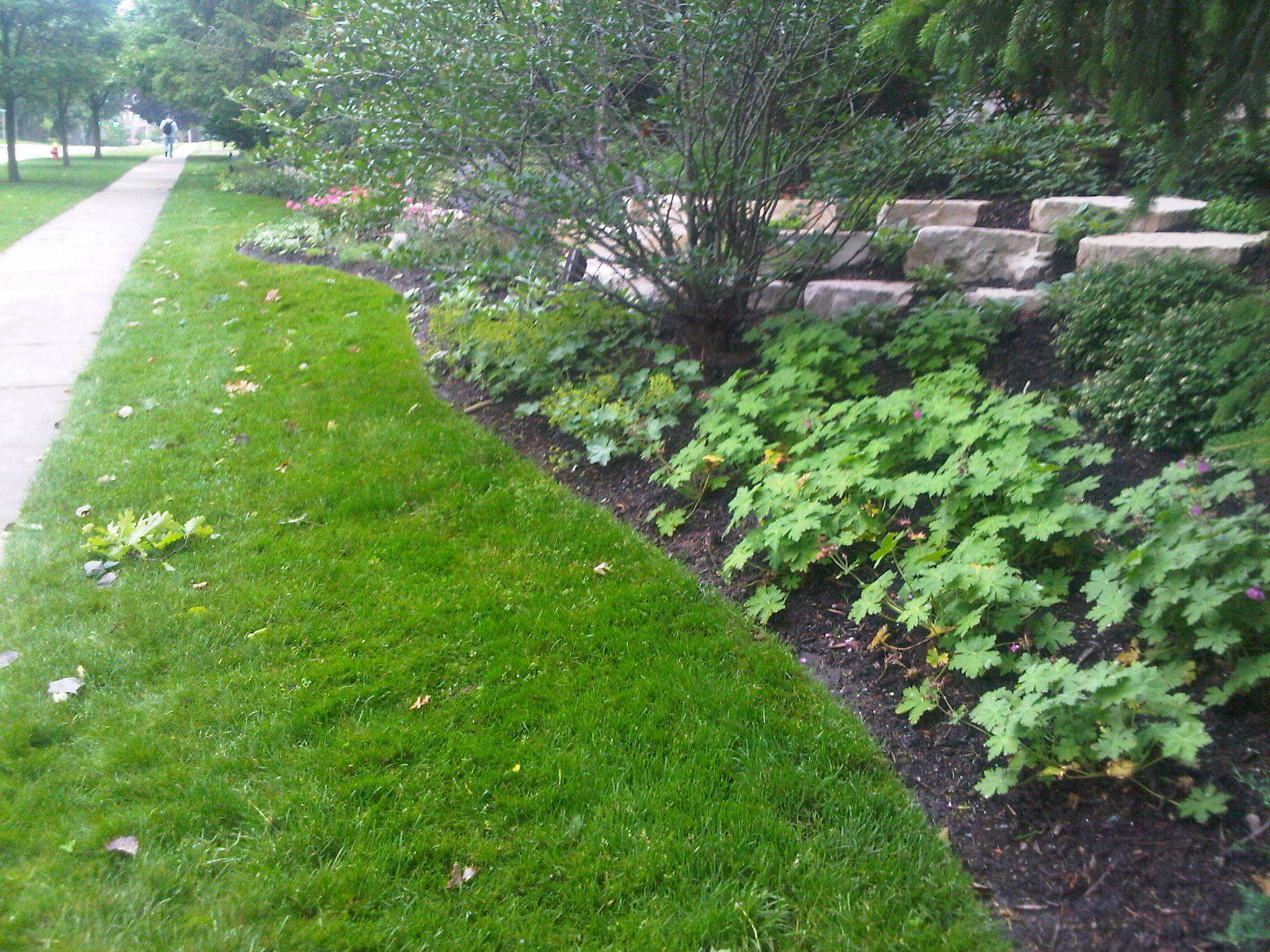4 Tips To Keep in Mind When Looking for a Lawn Service Provider in the Highland Park, IL, Area