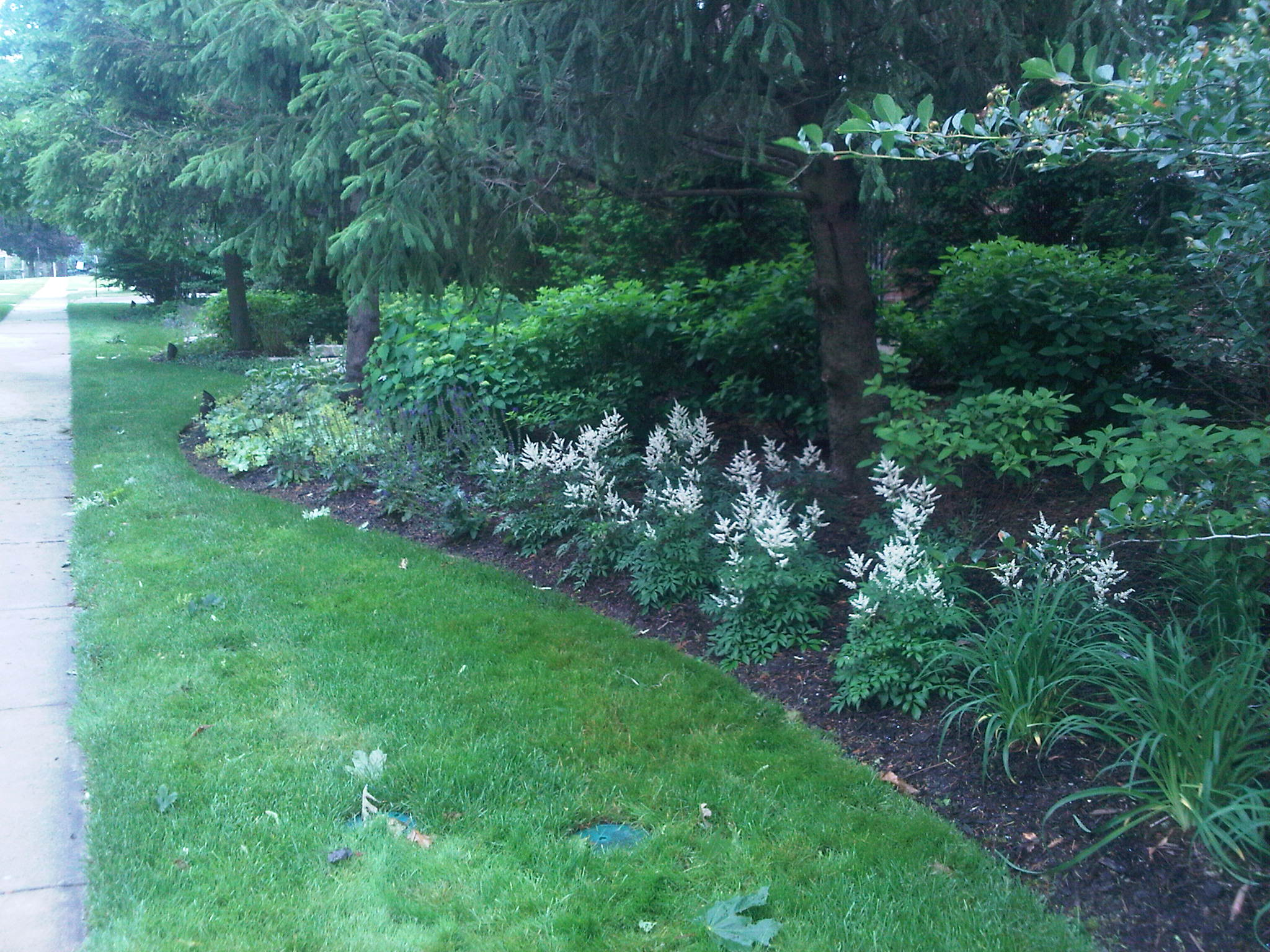 5 Tips for Lawn Care Service in the Highland Park, IL Area
