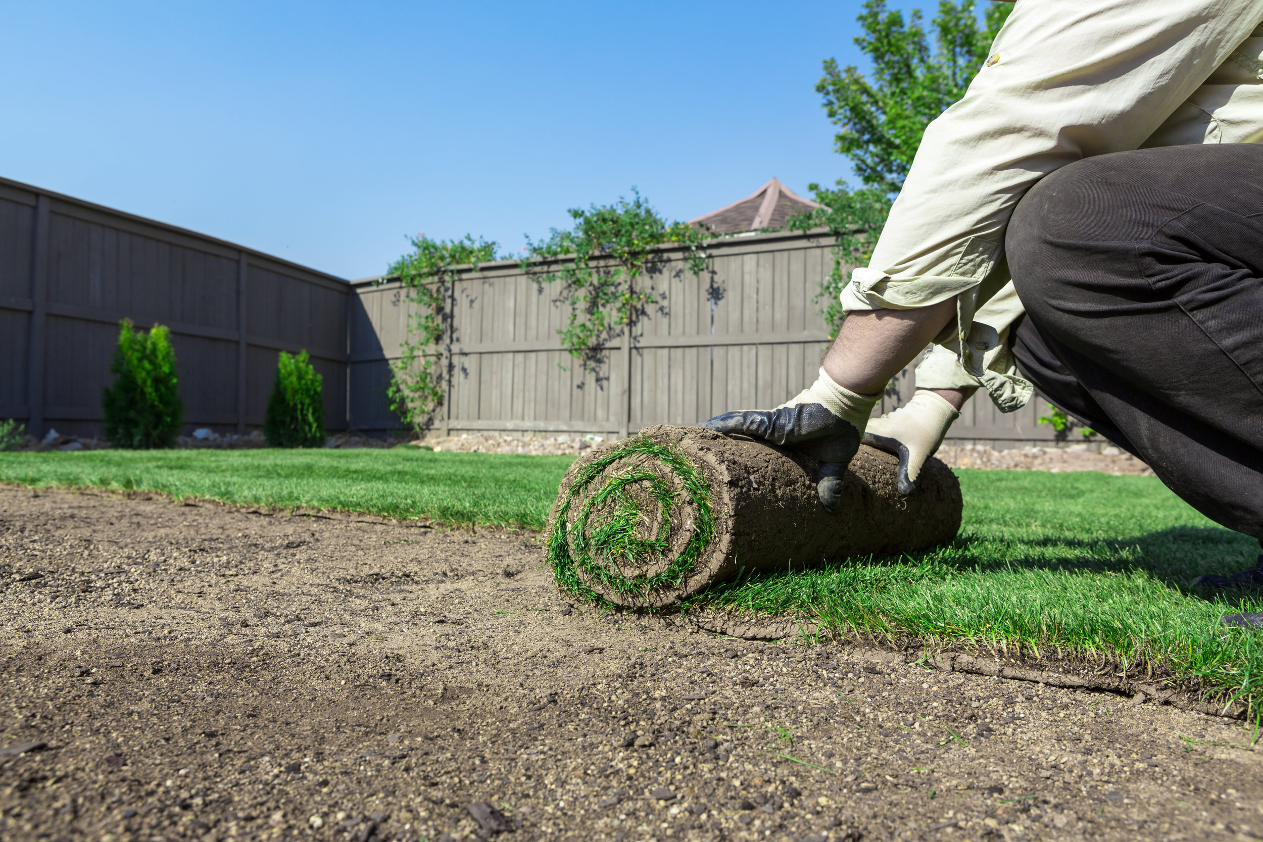When Is the Best Time for Sod Installation for Your Naperville, IL, Landscaping?