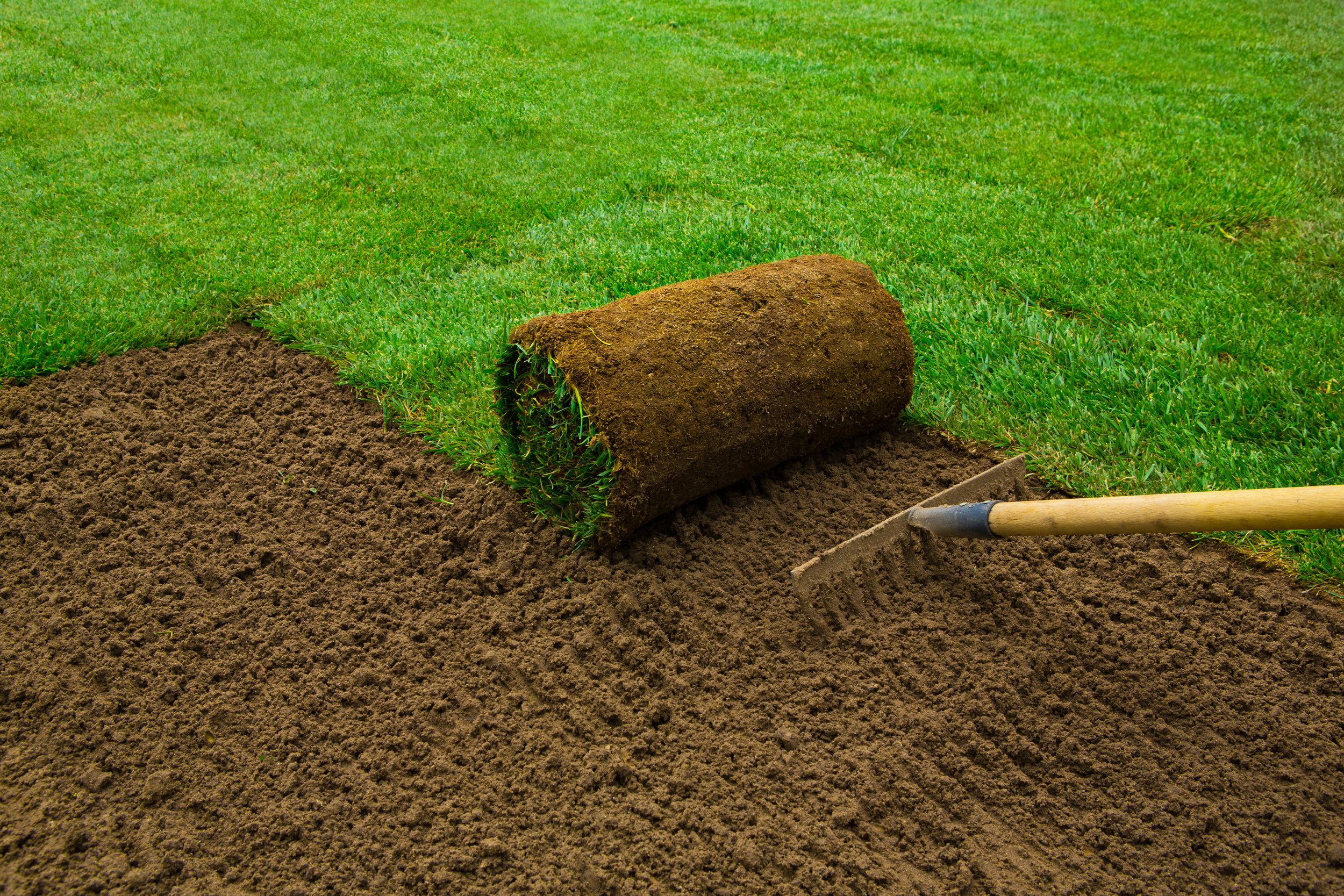 Understanding the Sod Installation Process in Oswego, IL