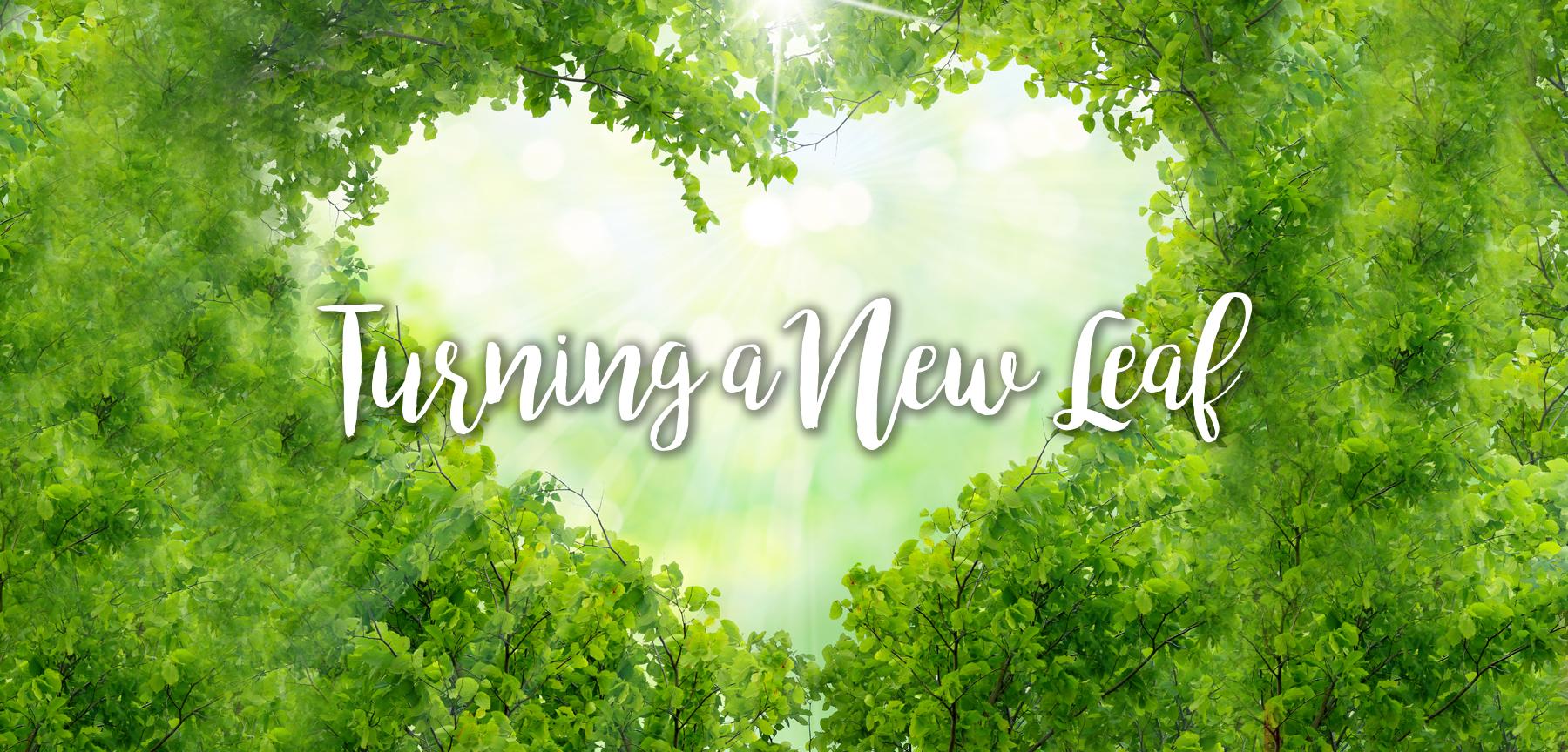 Turning a New Leaf banner.jpg