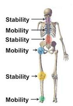 MobilityStability.jpg