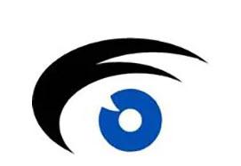 Puerto Rico Society of Ophthalmology logo vs2.jpg