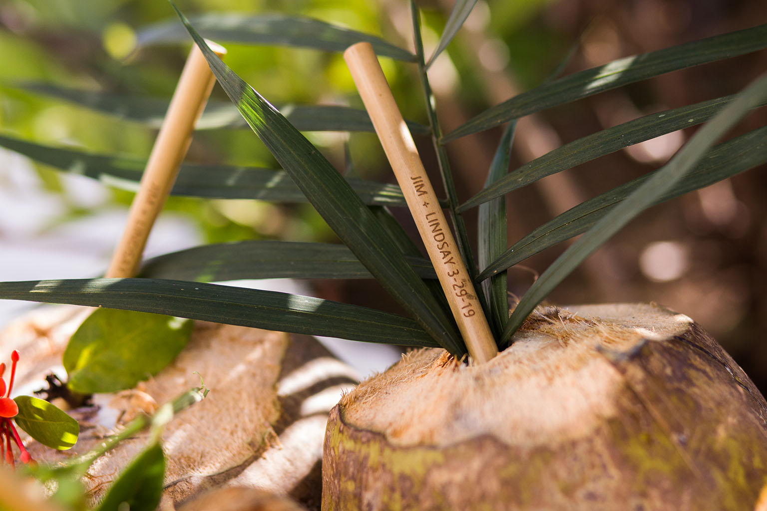 Fresh coconuts with our party favor–engraved reusable bamboo straws. Photo by  Cristheell Bernal