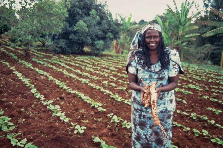 kenyan-activist-wangari-maathai-happiness-agora.jpg