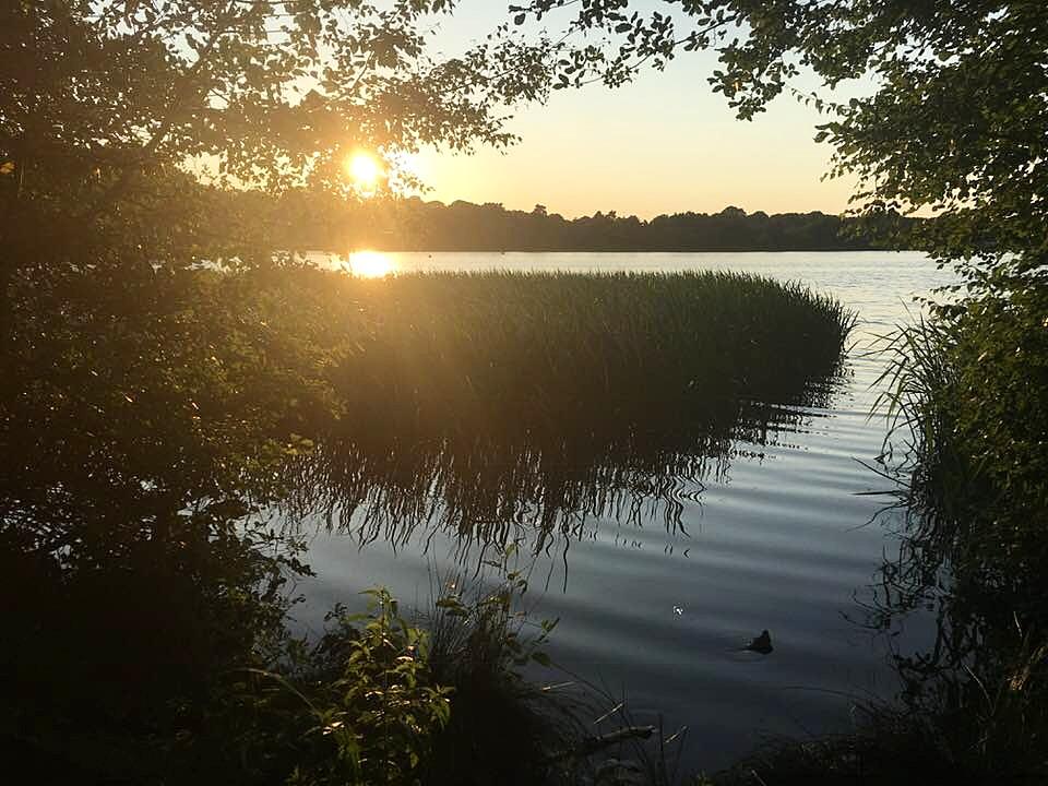 Visit Frensham Pond in Farnham