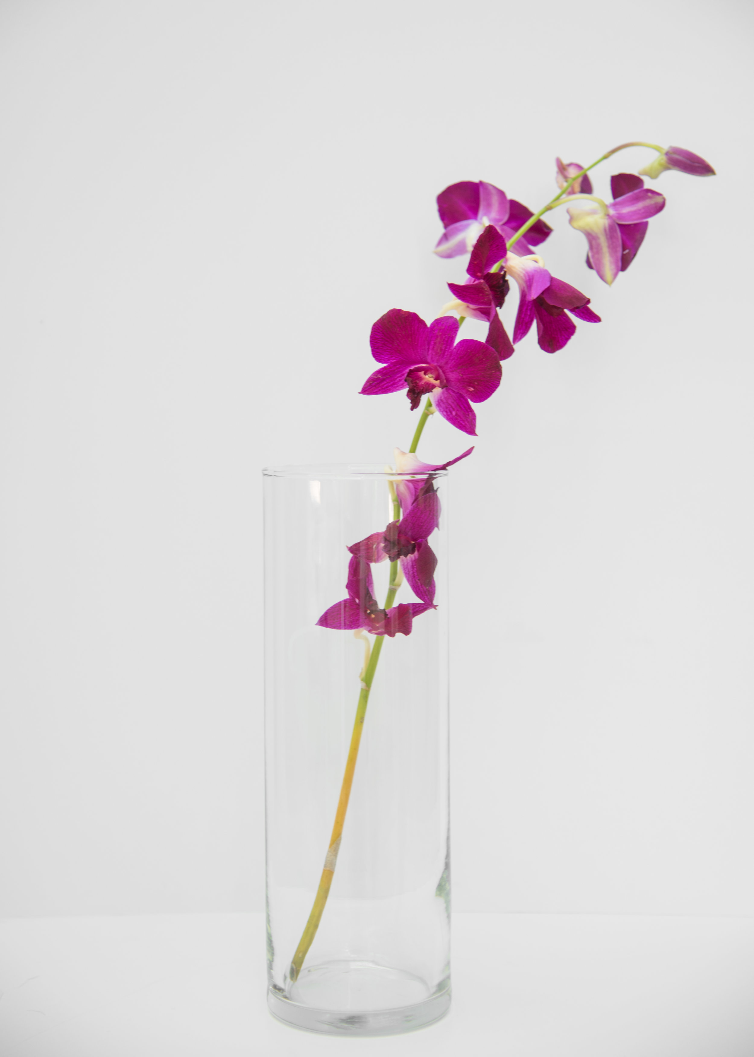 """Clear Glass Vase 3.4'' x 10"""" $4"""