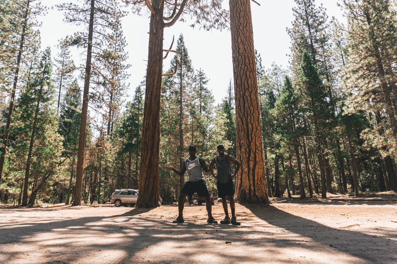 Yosemite-2018-9.jpg