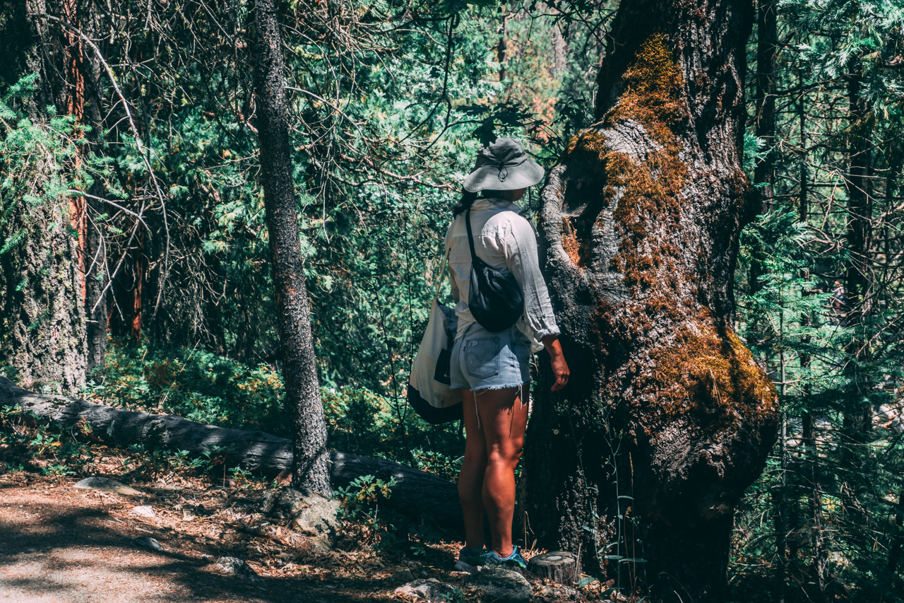 Yosemite-2018-14.jpg