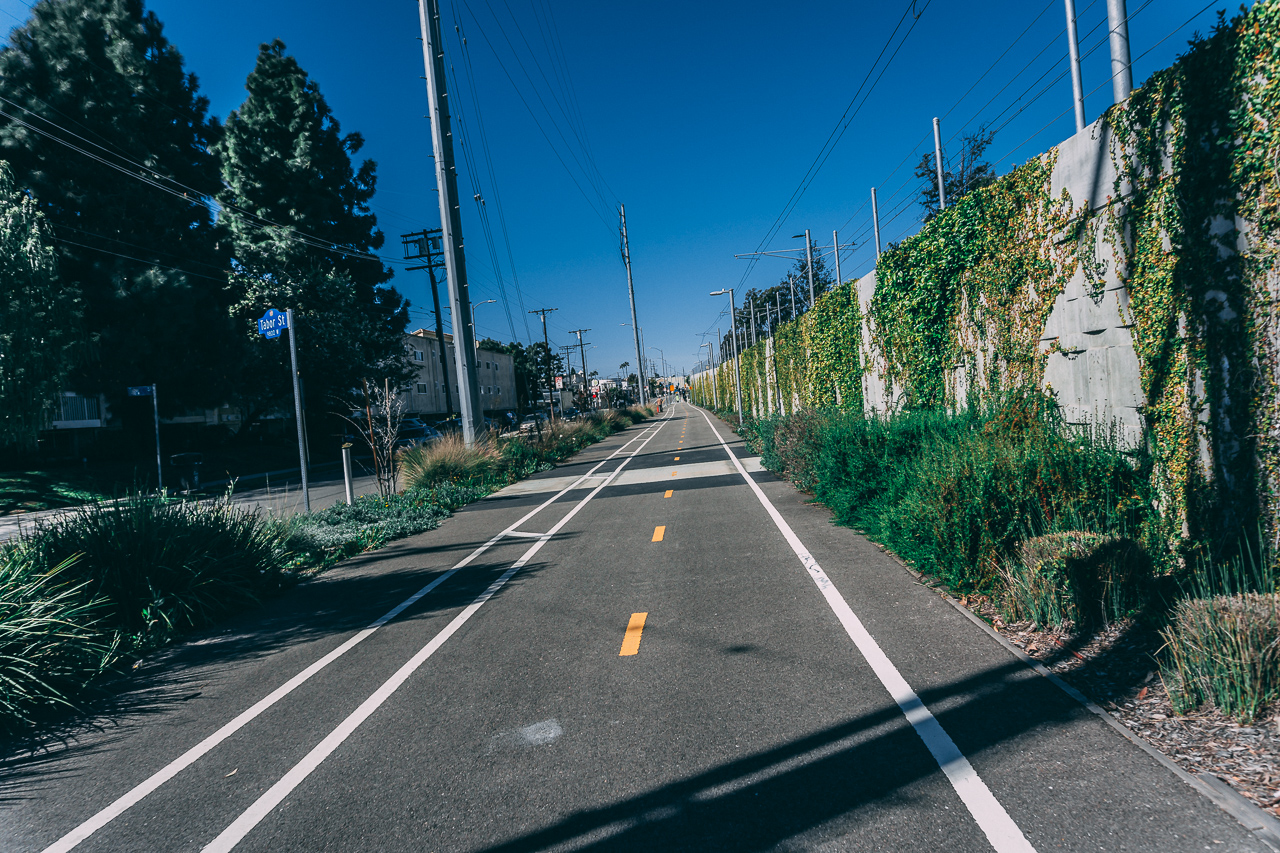 Bike Paths everywhere - They provide relief from traffic filled roads, they're well maintained, and are often lined with trees.