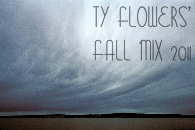 Ty Flowers Fall Mix 2011