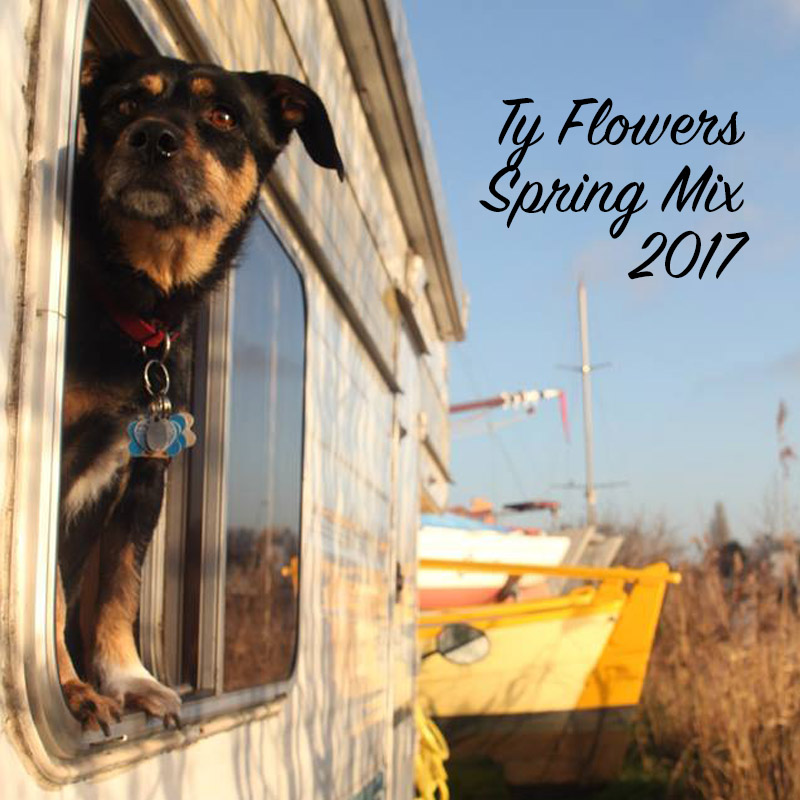 Ty Flowers Spring Mix 2017