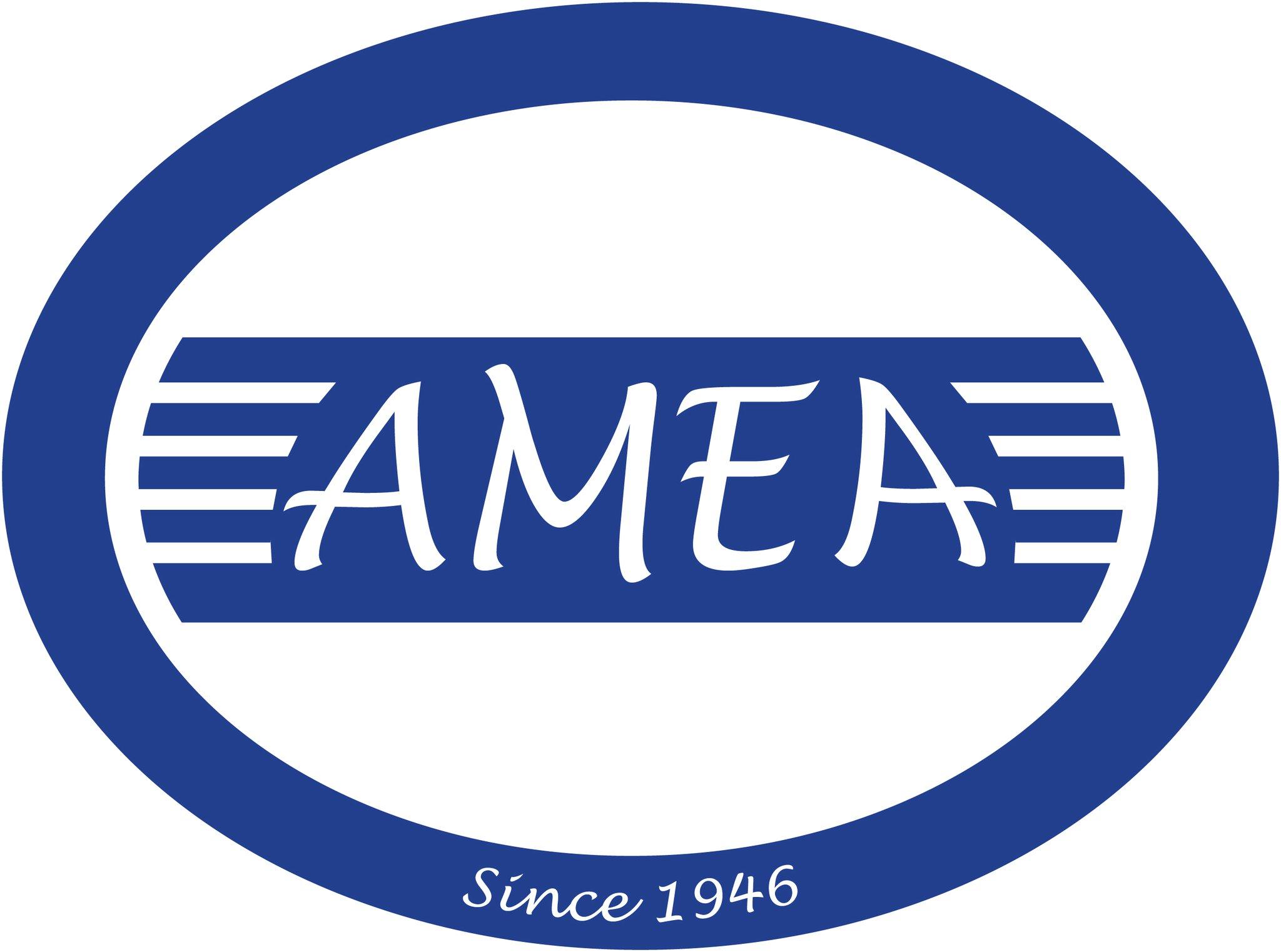 AMEA logo.jpg