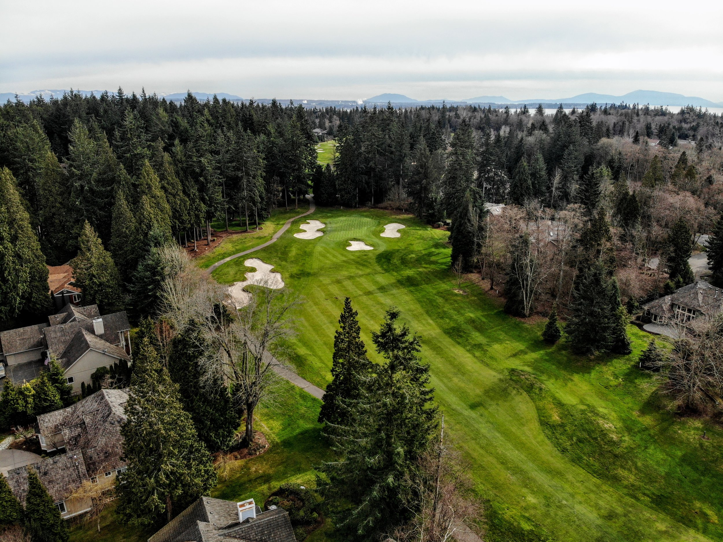 5529 Canvasback Road #17 drone golf course.jpg