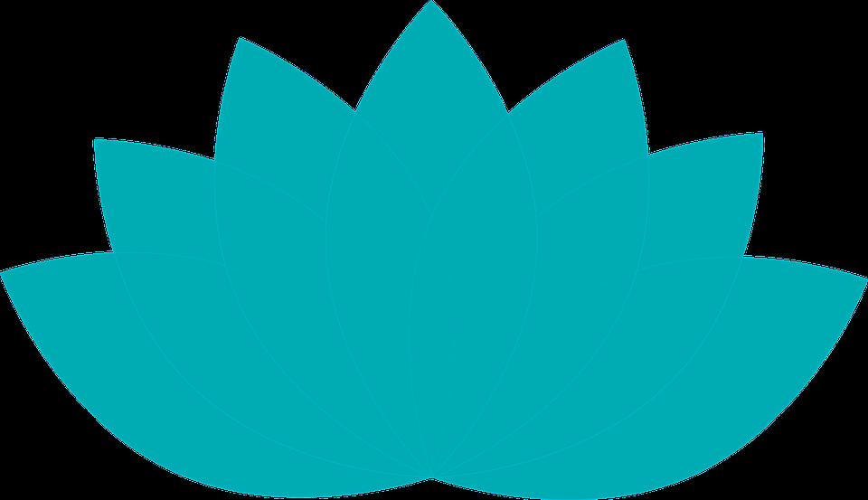 lotus-1889805_960_720.png