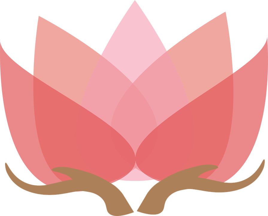 lotus-with-hands-1889661_960_720.png
